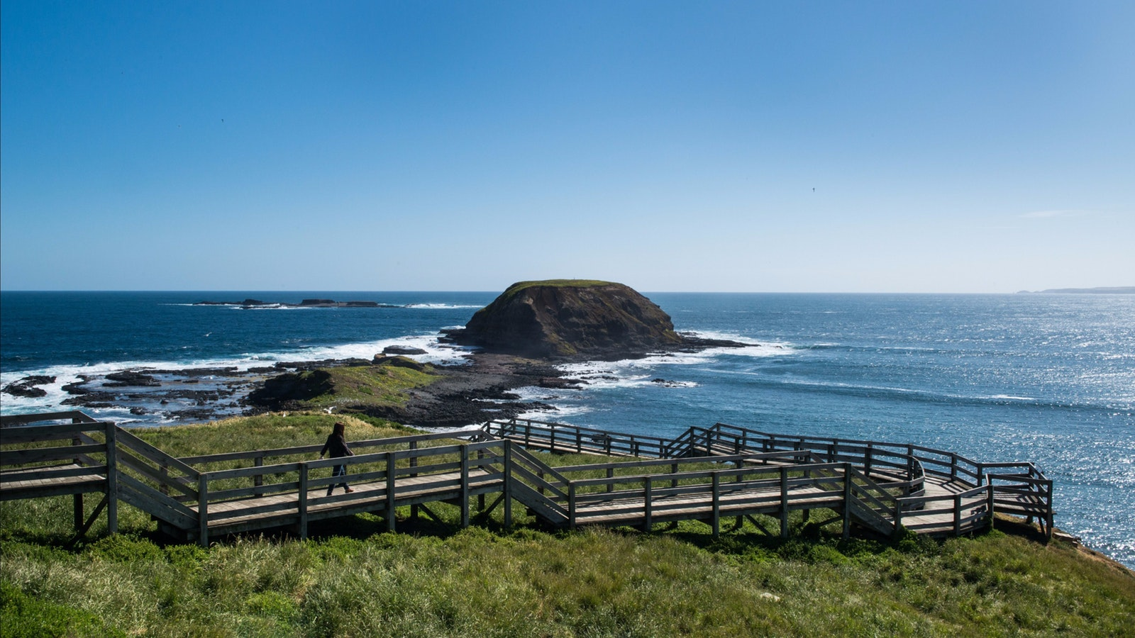 Phillip Island Private Tour
