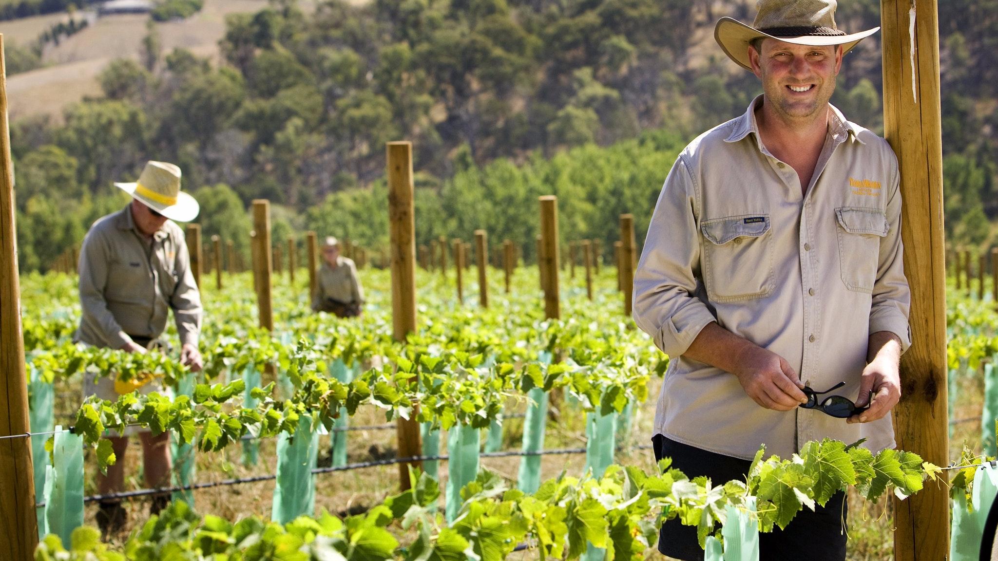 Yarra Valley Foodie Gourmet Private Tour