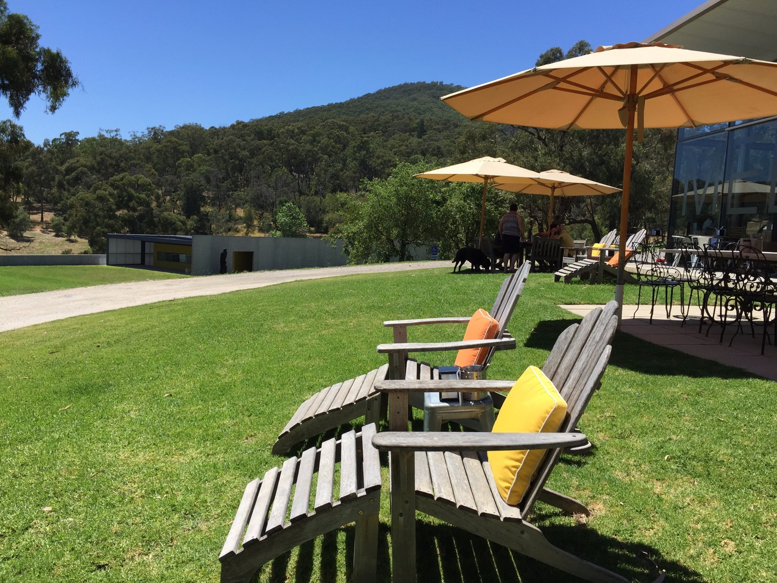 Medhurst Winery - Colourful sunlounges