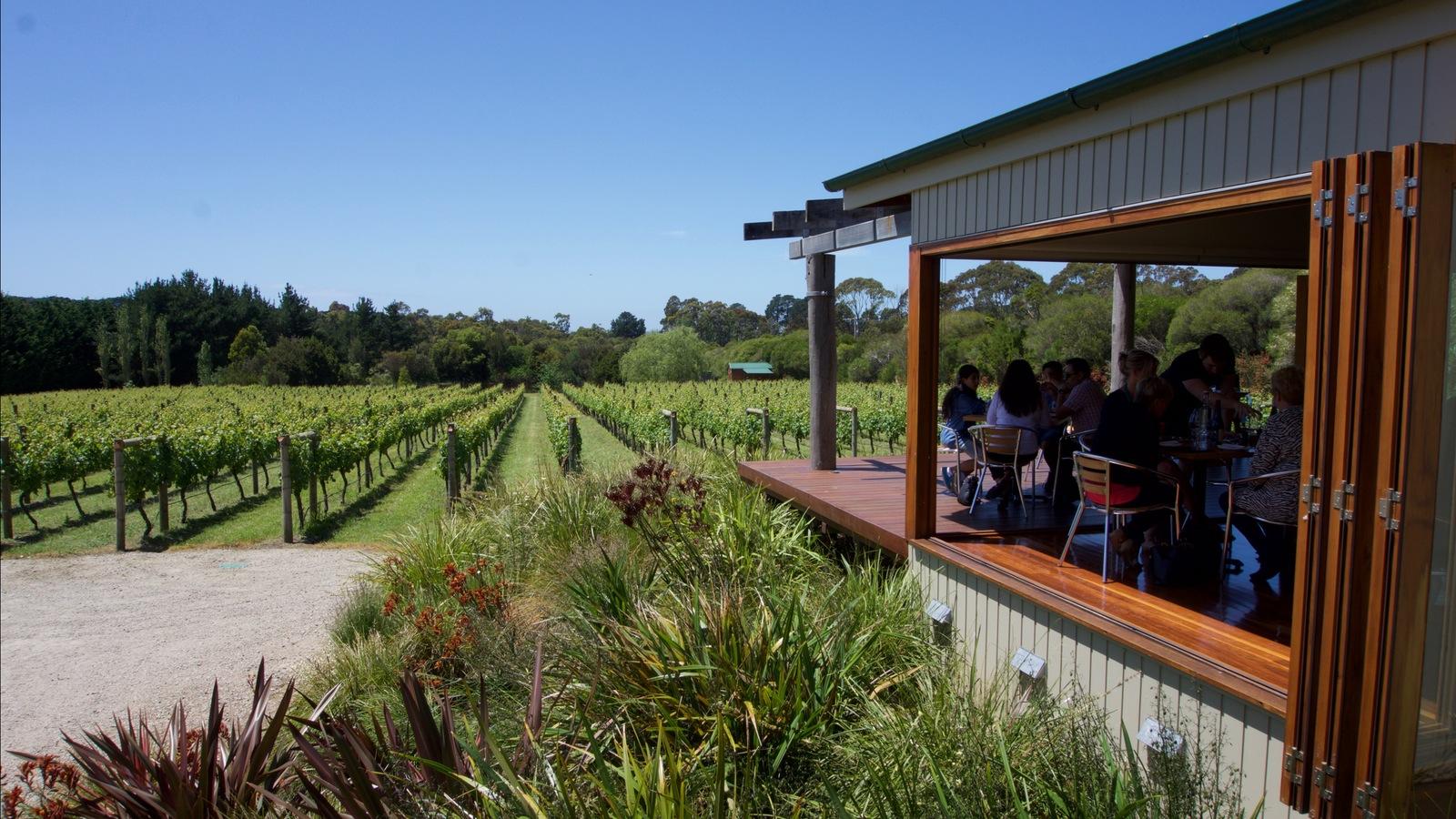 Vines and Dining at Merricks Creek