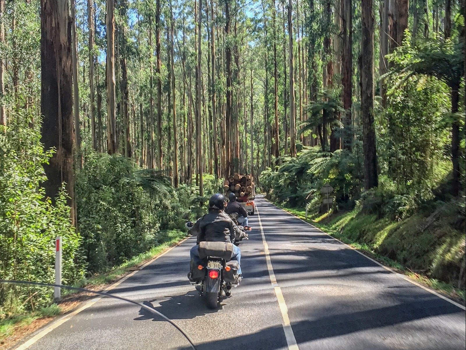 Motorbike Tours Melbourne