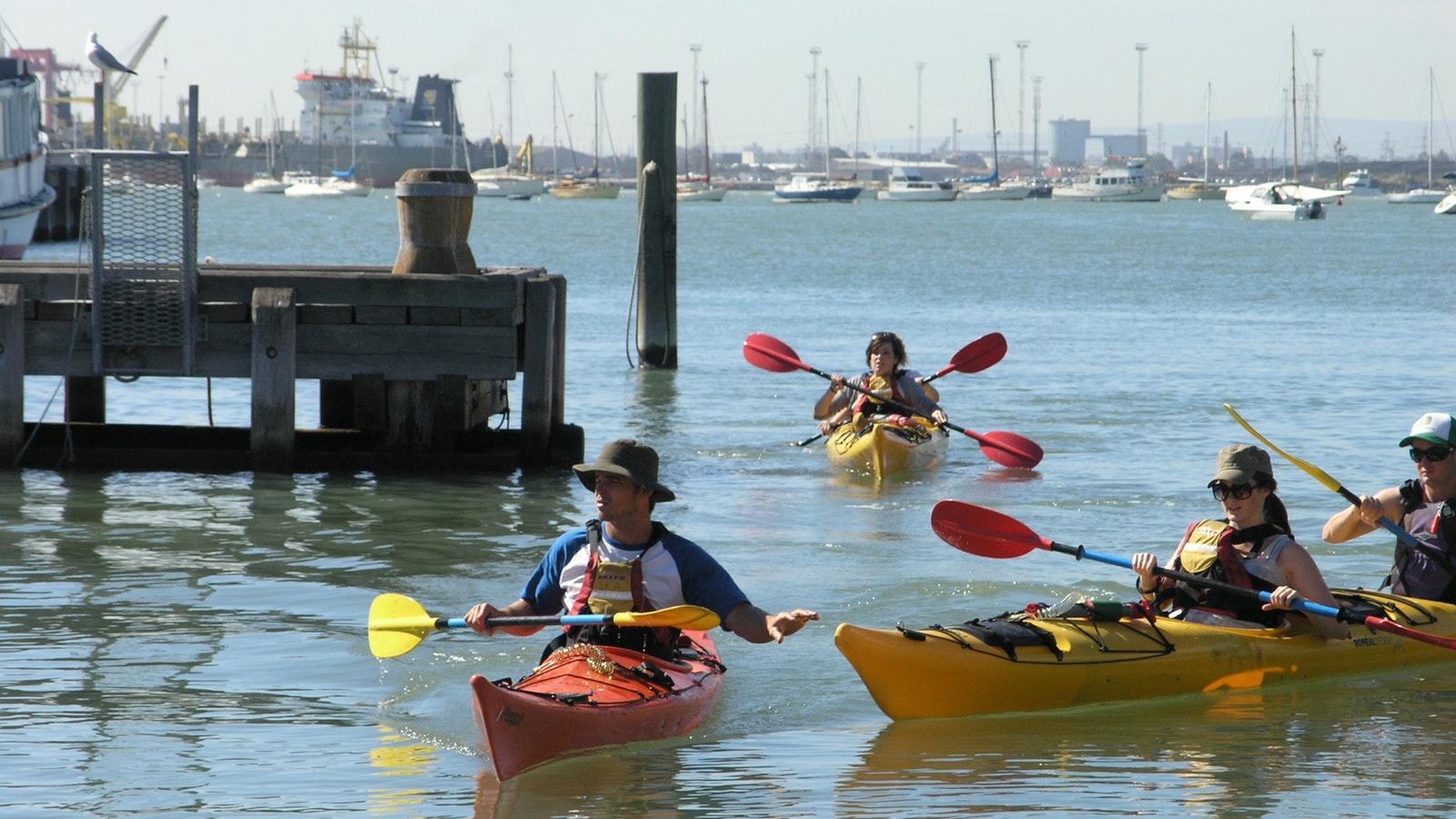 Williamstown Sea Kayak Tour