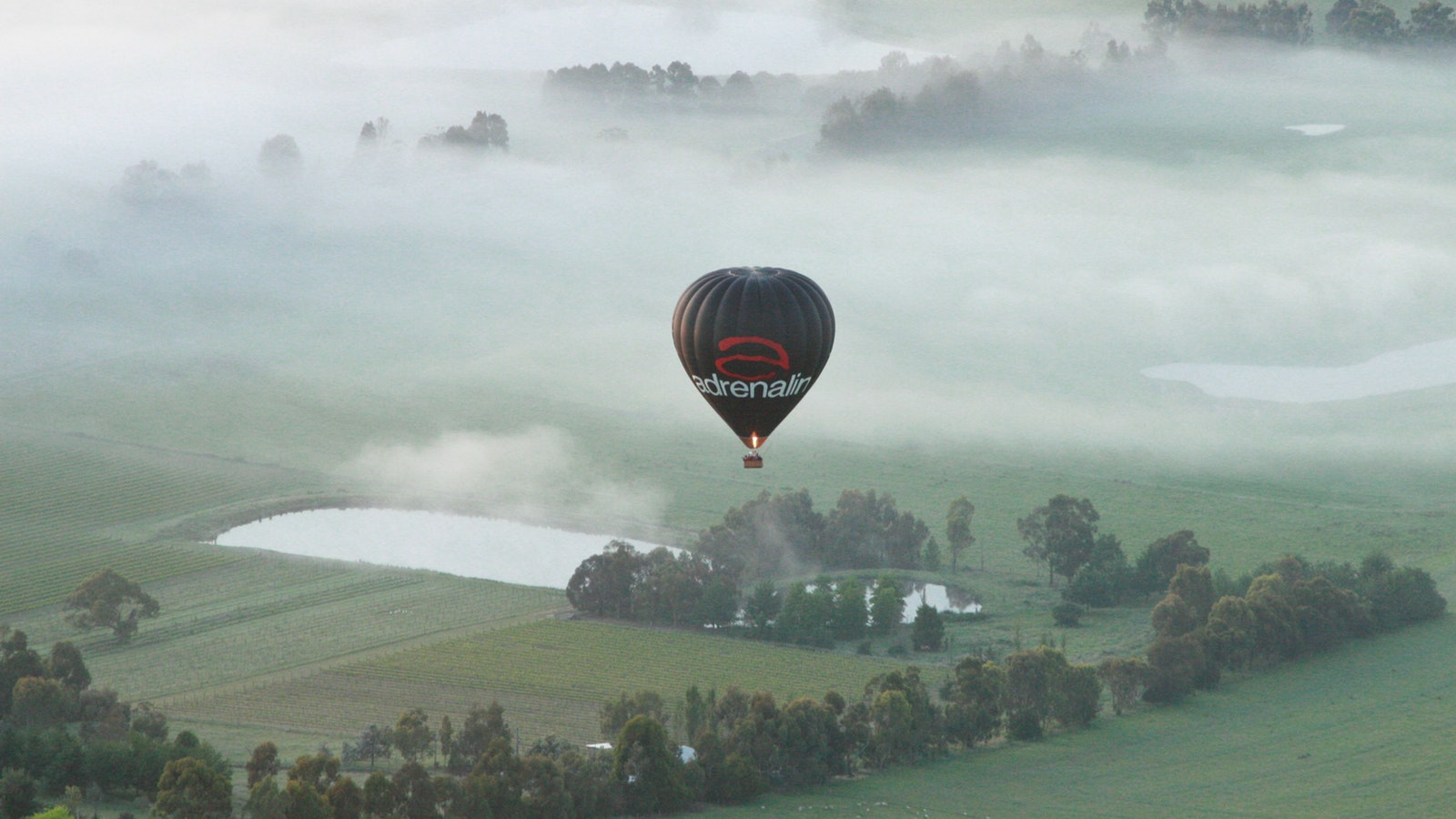 Picture This Ballooning