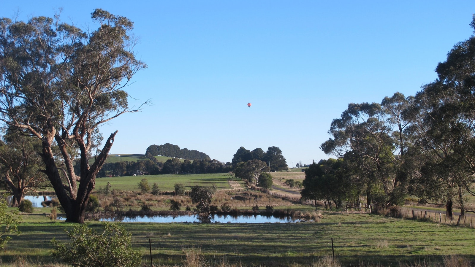 Beautiful countryside and Picture This Ballooning hot air balloon at Daylesford