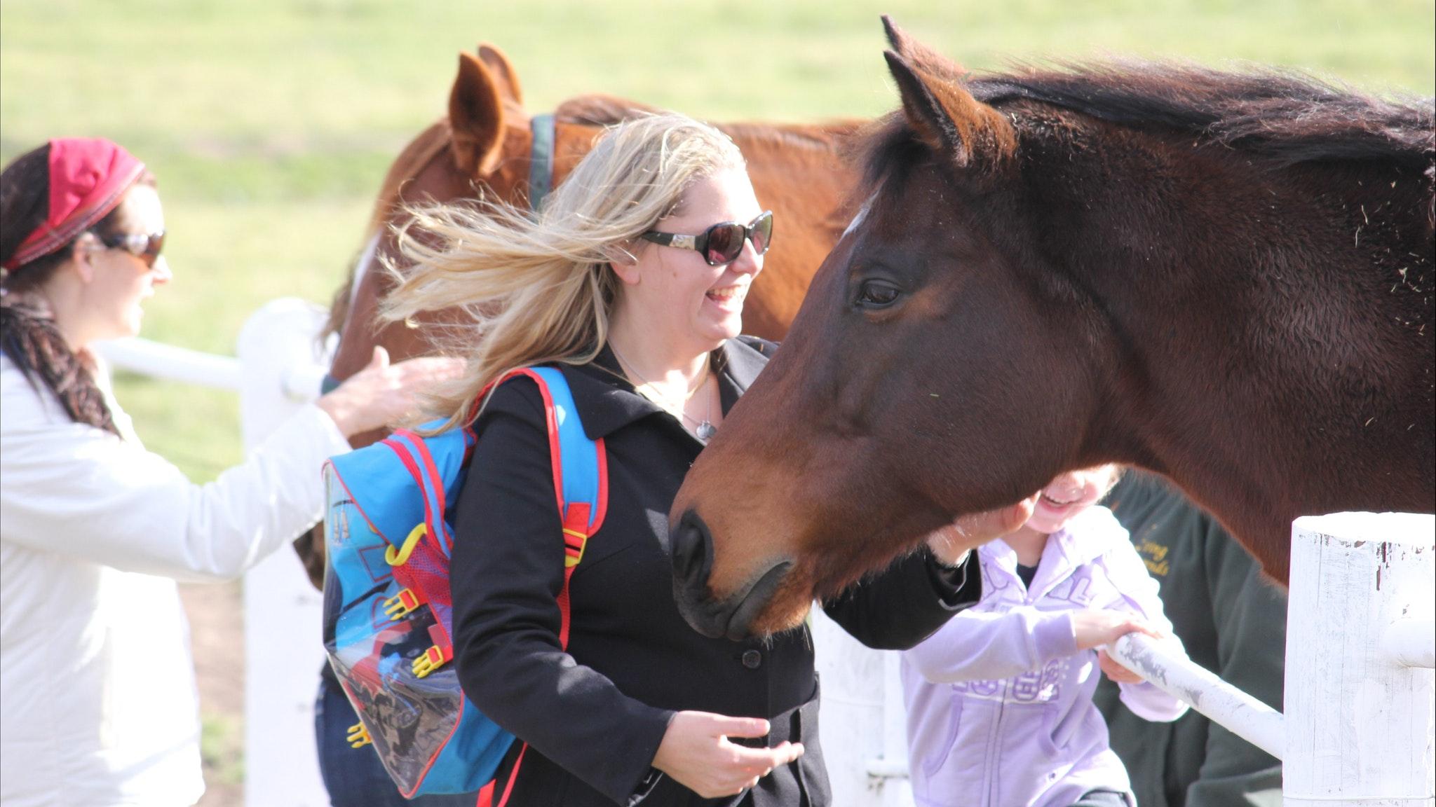 Horses, Wine, Beer Tour