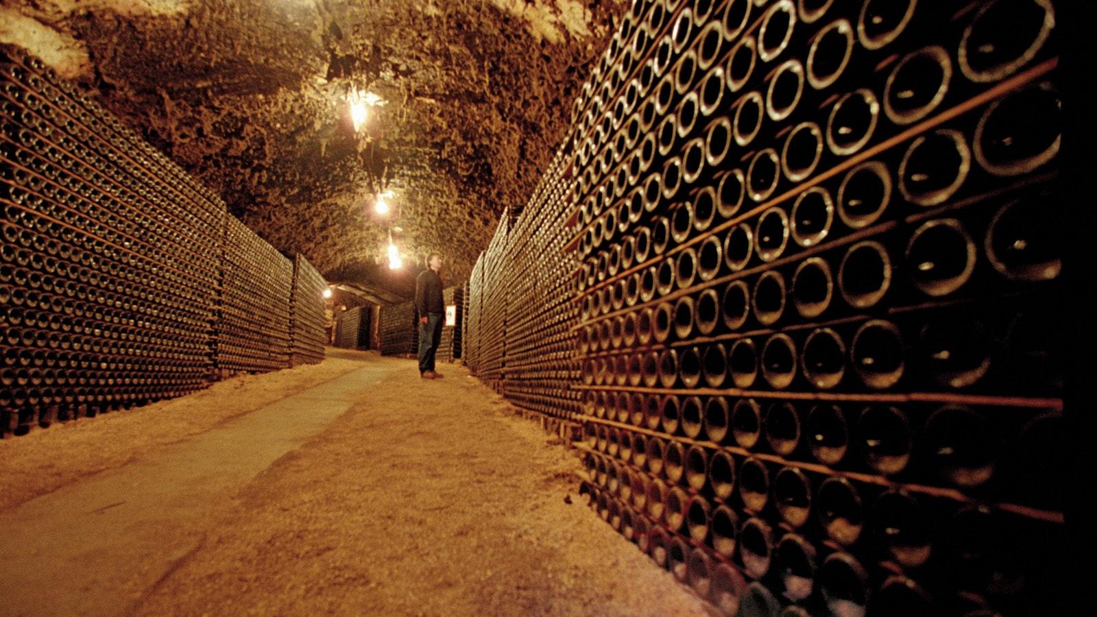 Bests wine cellar