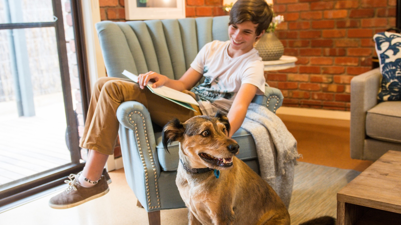 Mornington Peninsula Pet Friendly Accommodation