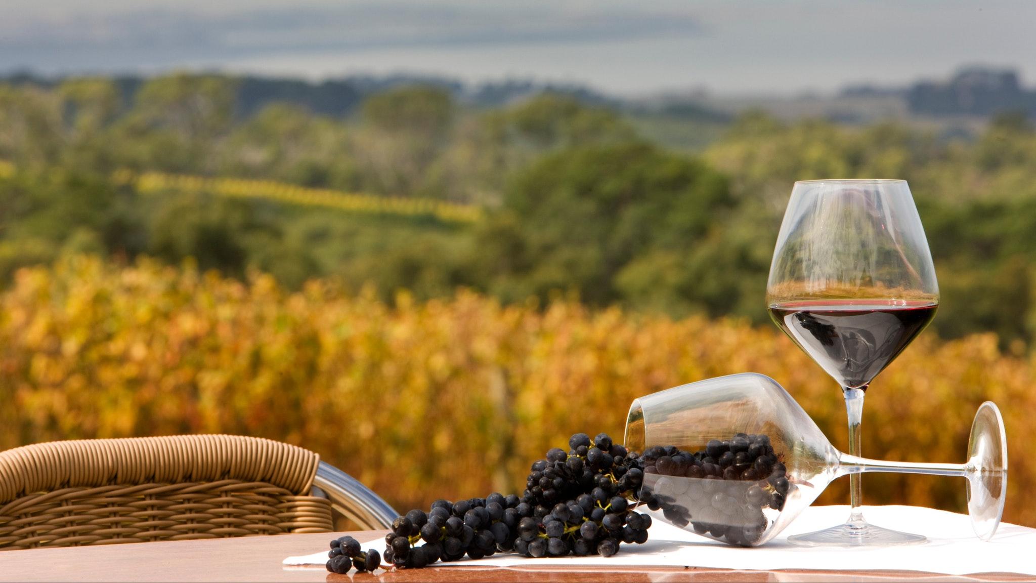 Winter Wine Weekend