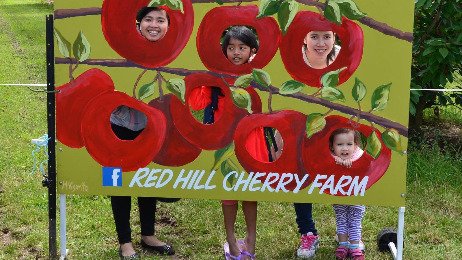 Red Hill Cherry Farm