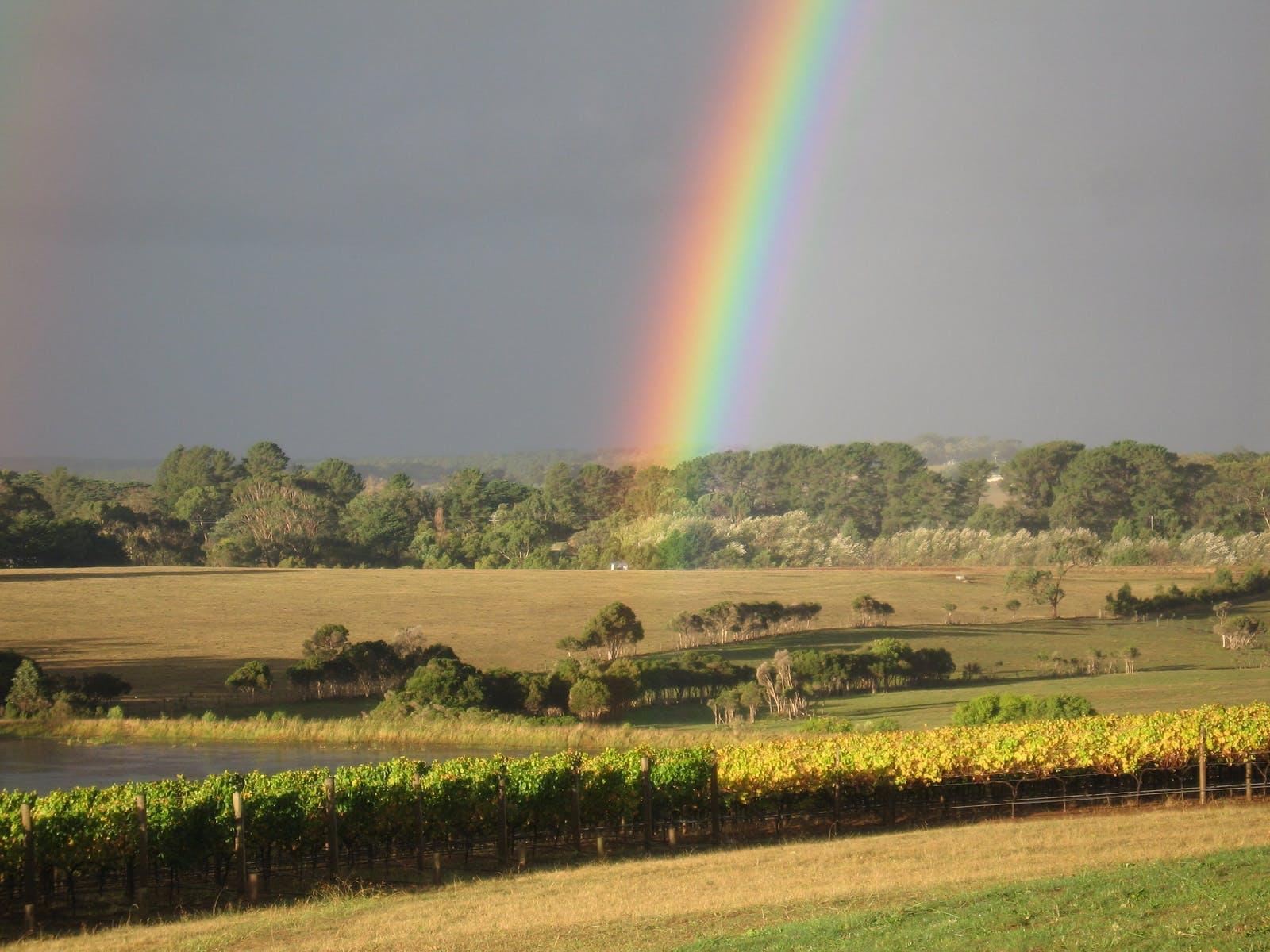 Paradigm Hill Rainbow