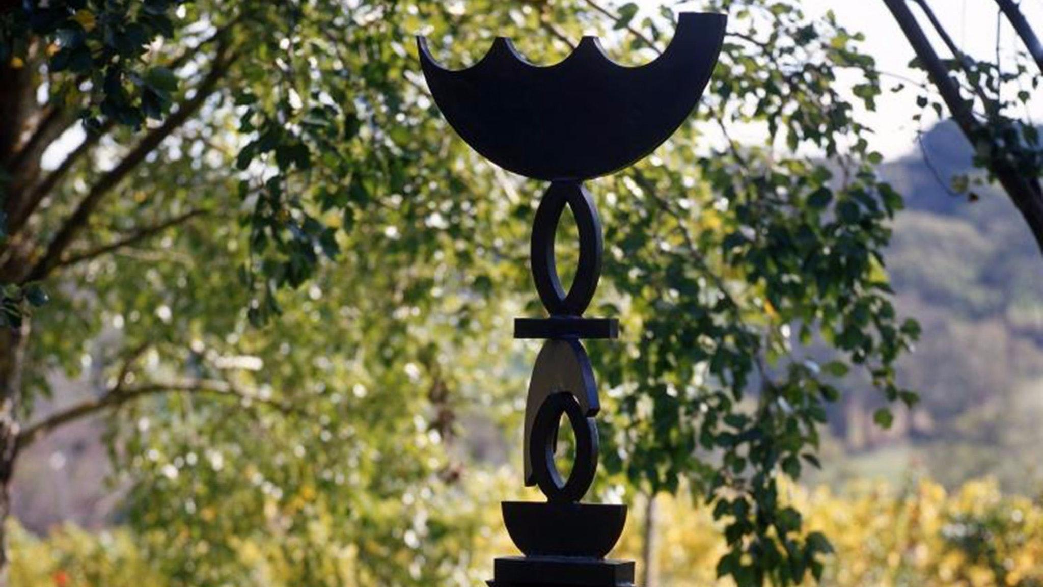 Exclusive Elgee Park Sculpture Walk and Vineyard Tour