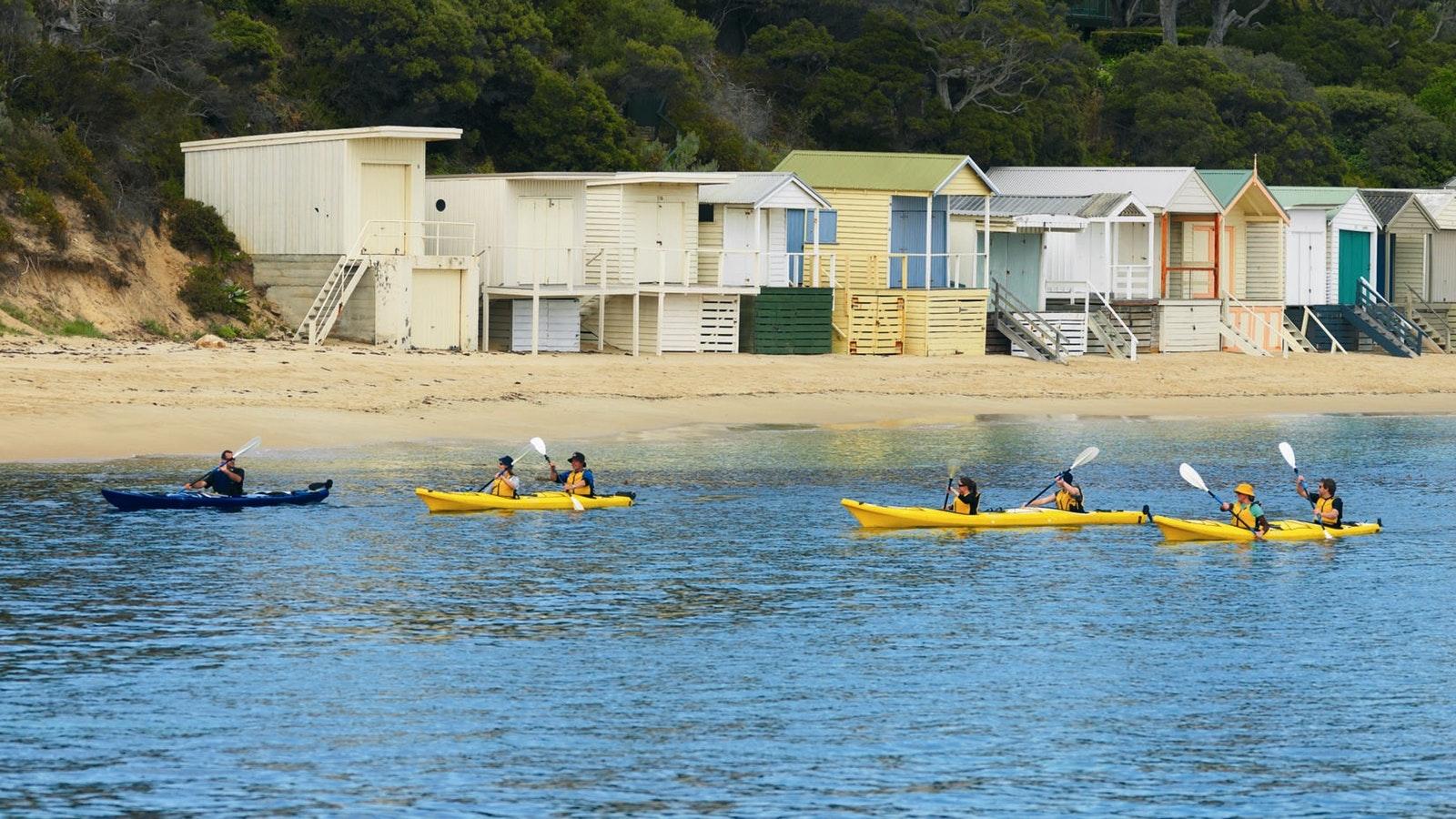 Sea Kayak - Dolphin Sanctuary