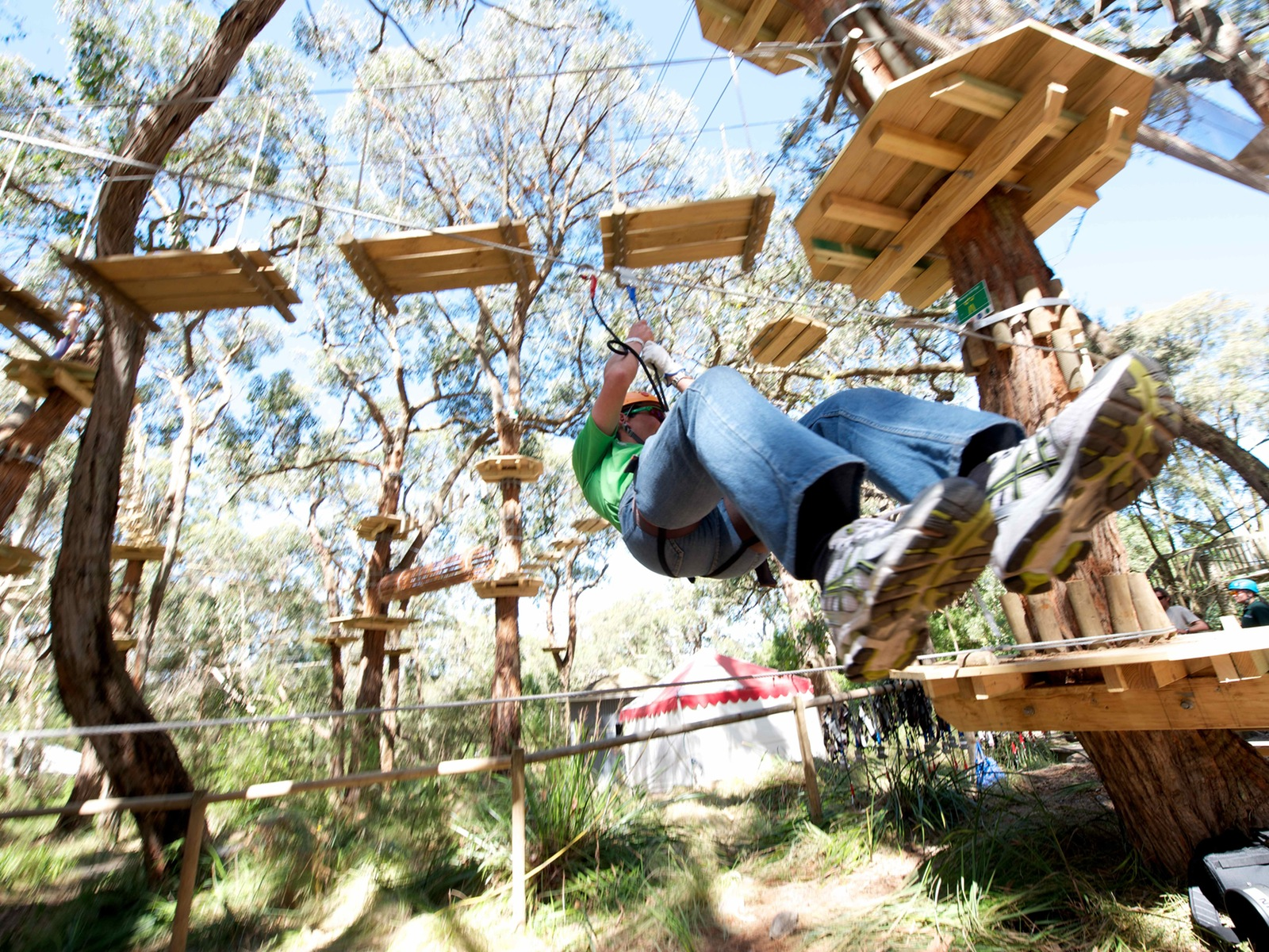Tree Surfing at the Enchanted Adventure Garden