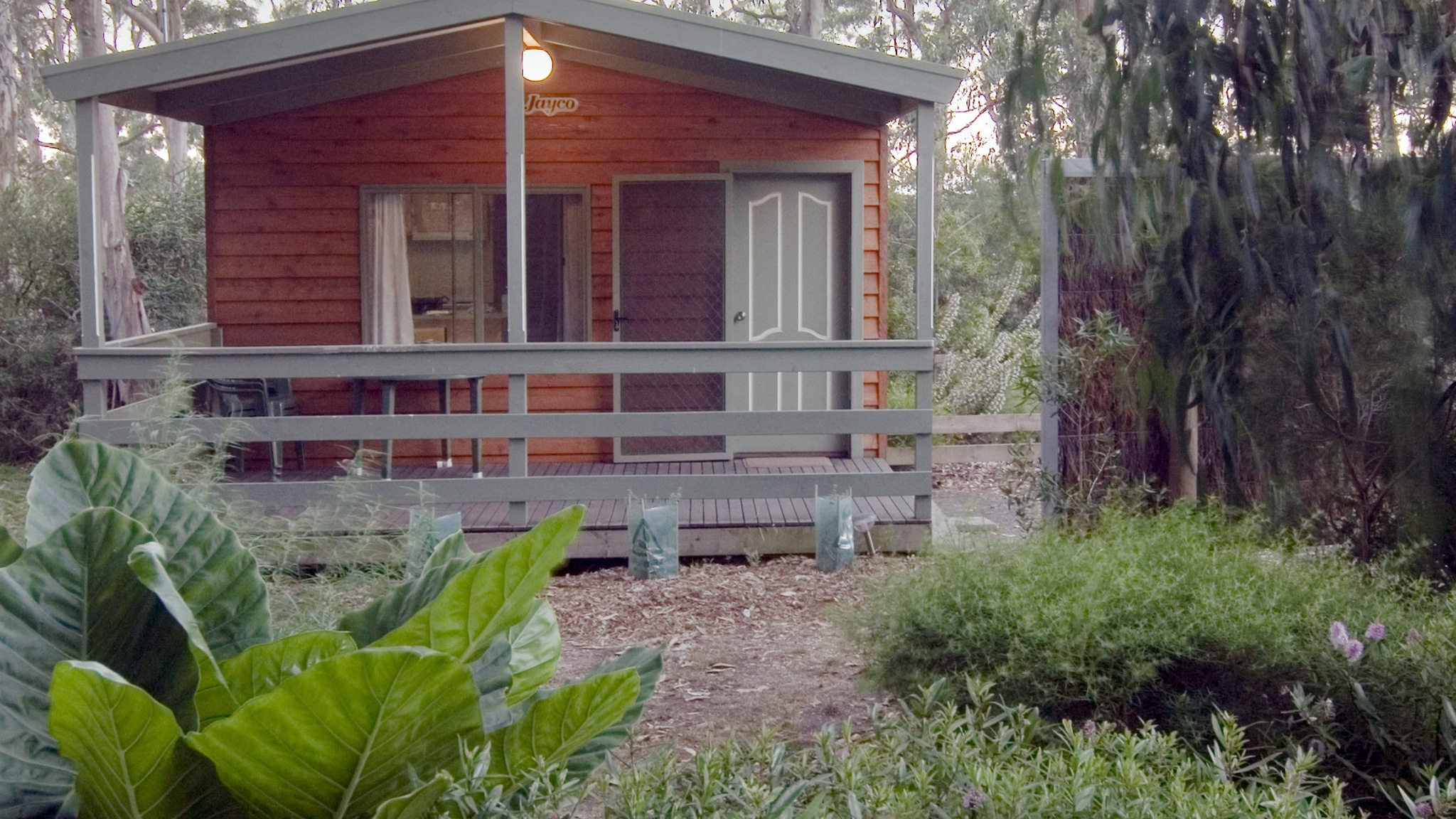Deluxe Family Ensute Cabin