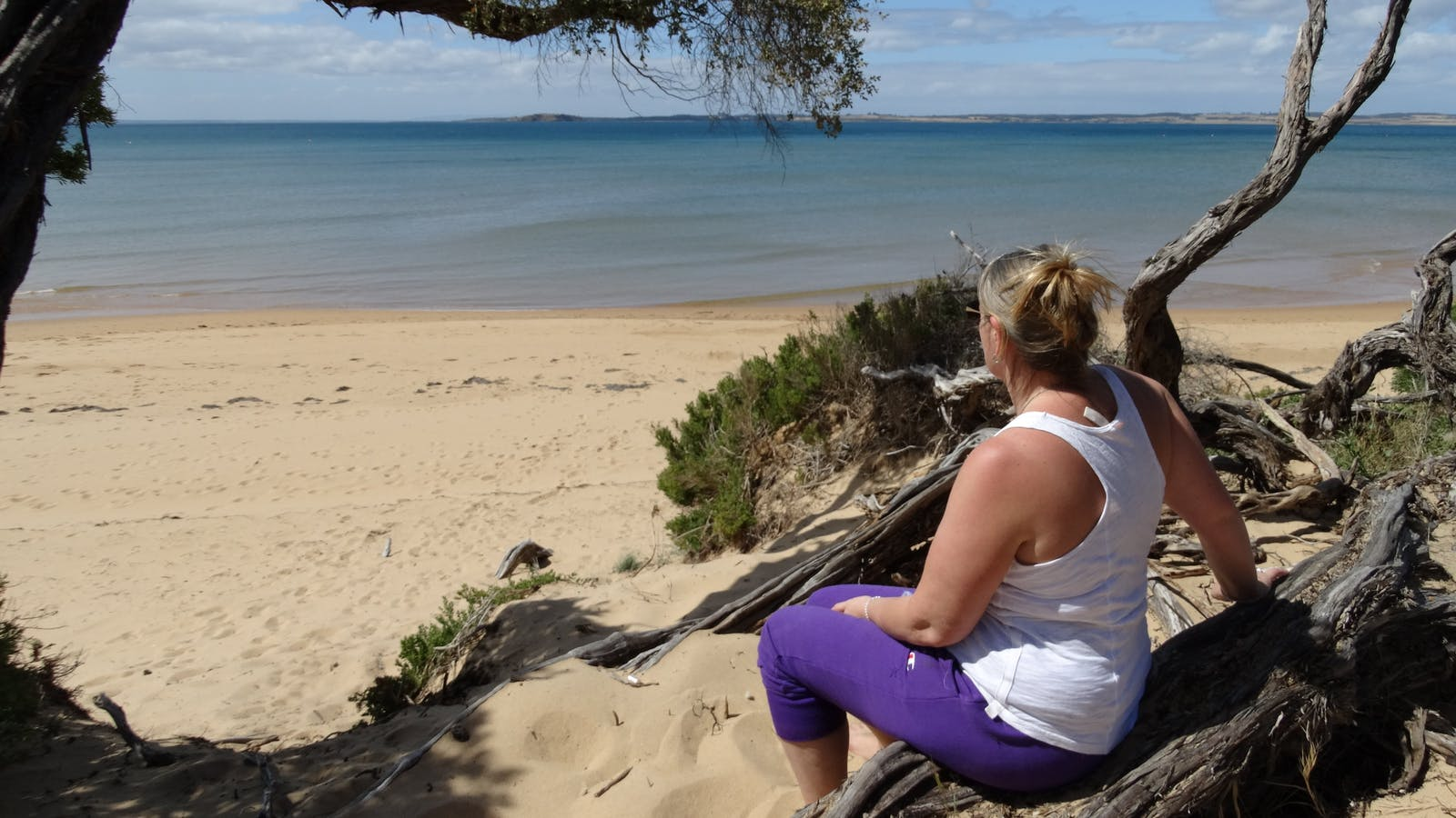Your own private beach at Silverleaves beachstay