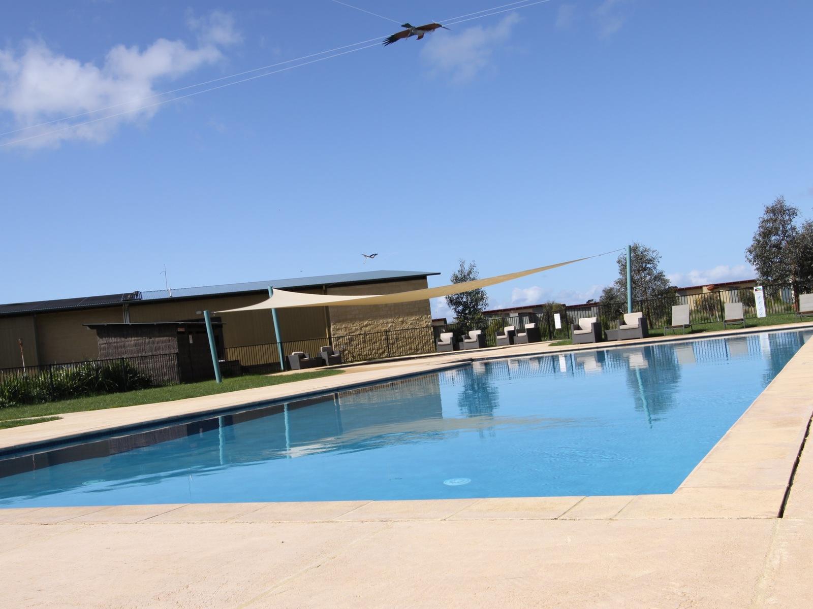 Ramada Resort Phillip Island swimming pool