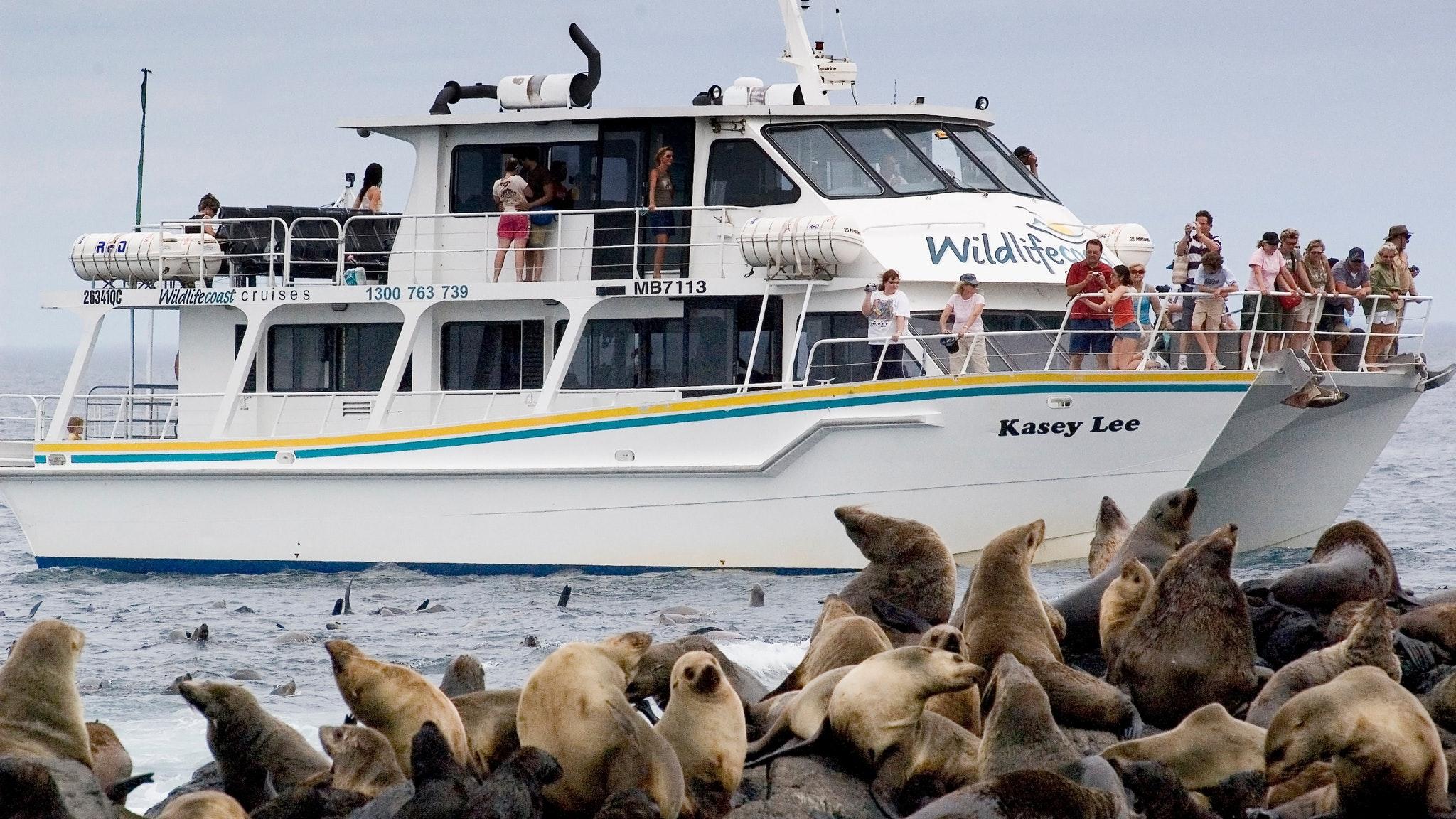 Wildlife Coast Cruises