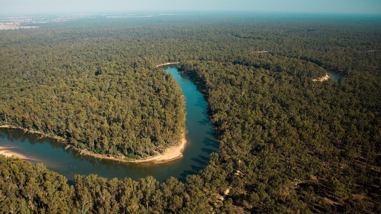 The Murray river, flight into the wilderness.