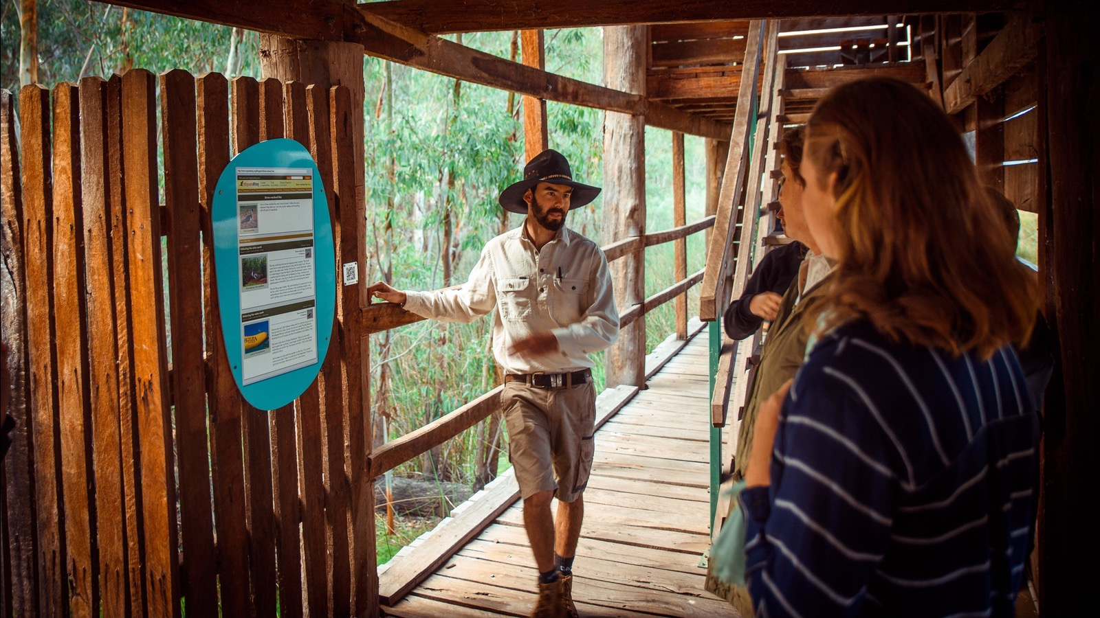 Interactive bird hide experience with guide.