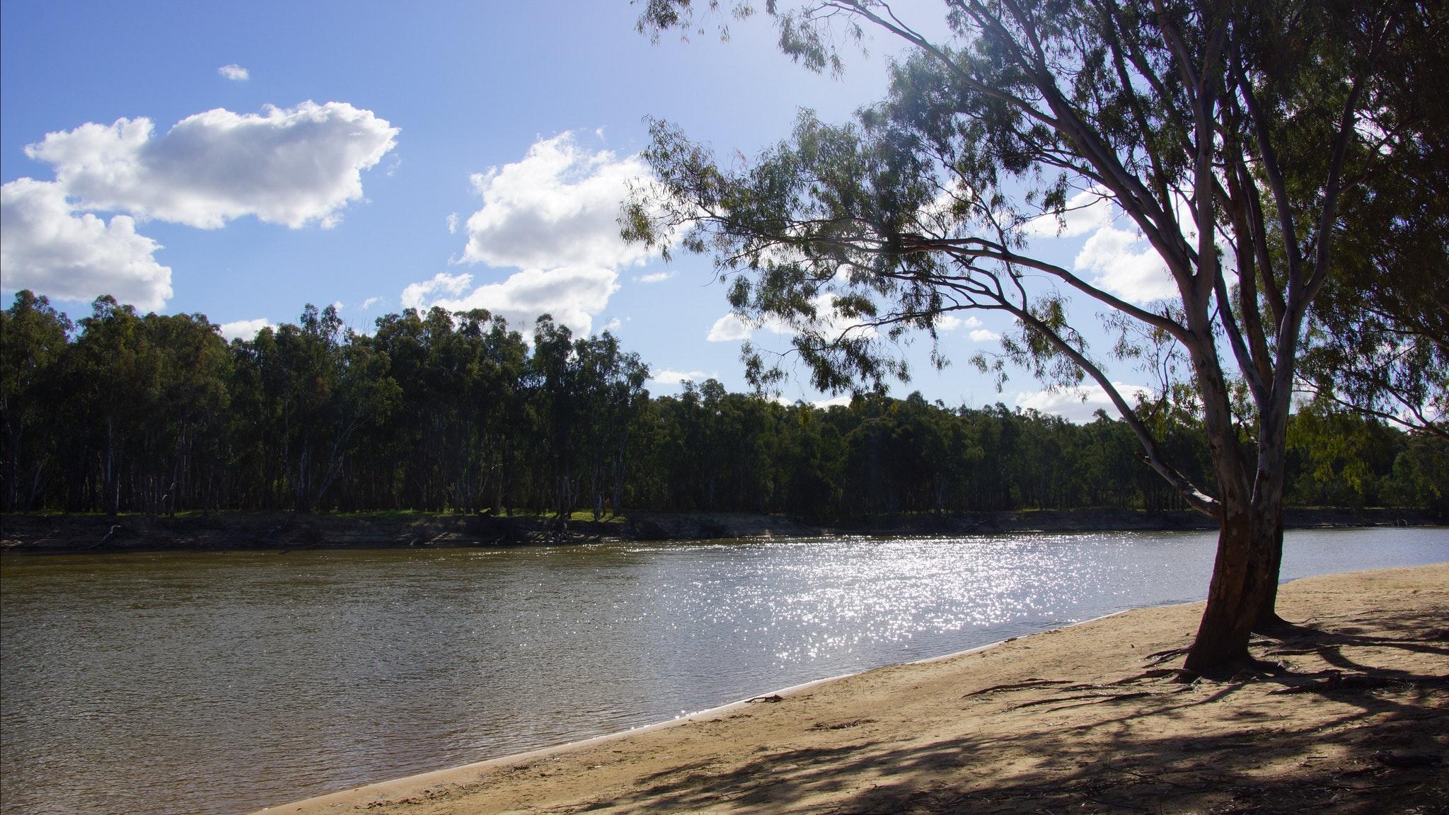 Murray River beach