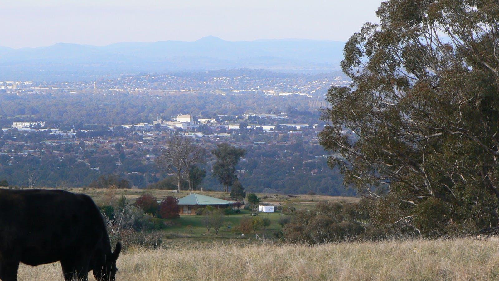 View overlooking Albury Wodonga from Gaddleen Grove Property, Wodonga