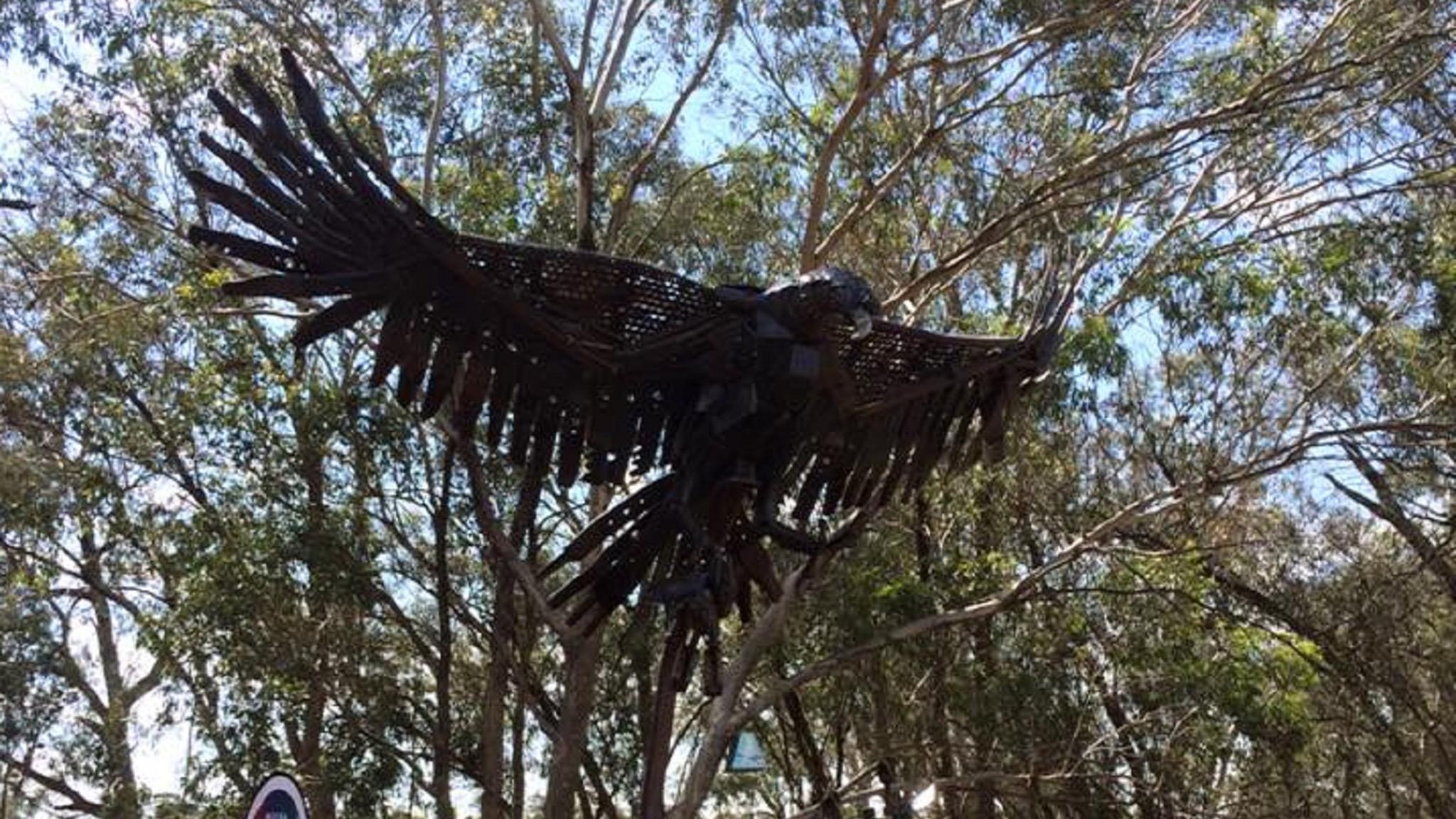 The Eagle at Katamatite