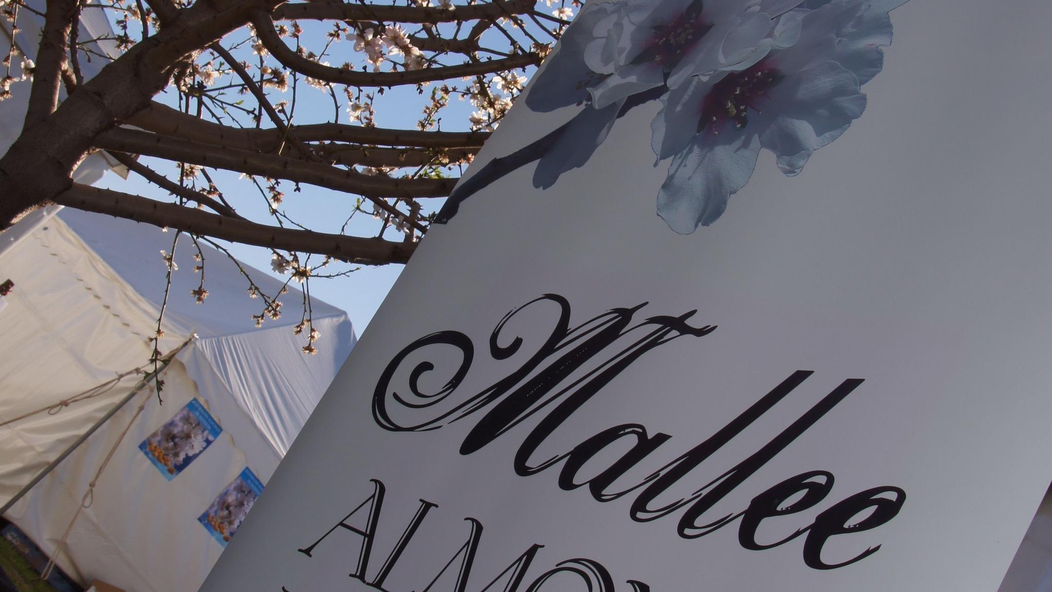 Mallee Almond Blossom Festival