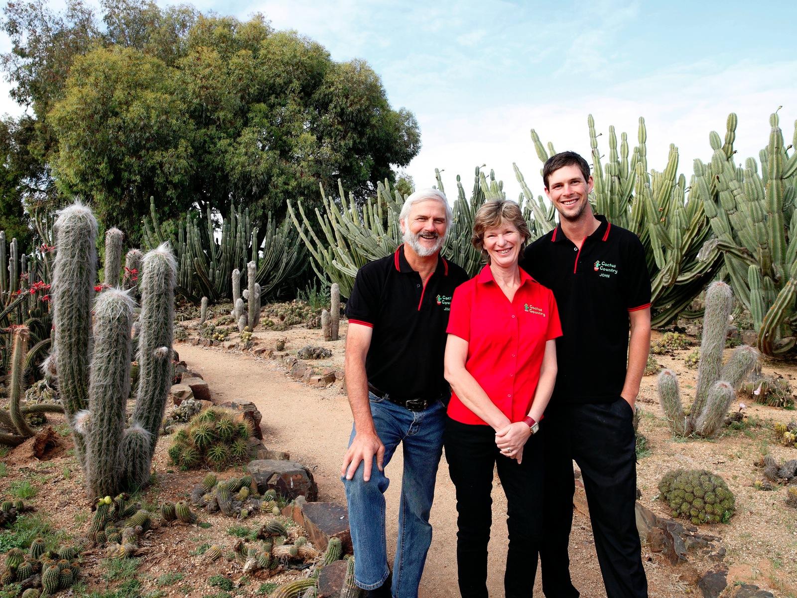 Cactus Country Garden
