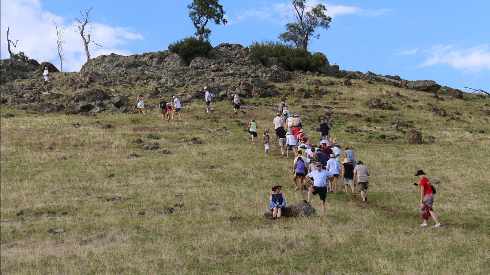 Rock Correa Walking Track at Tallis Wine