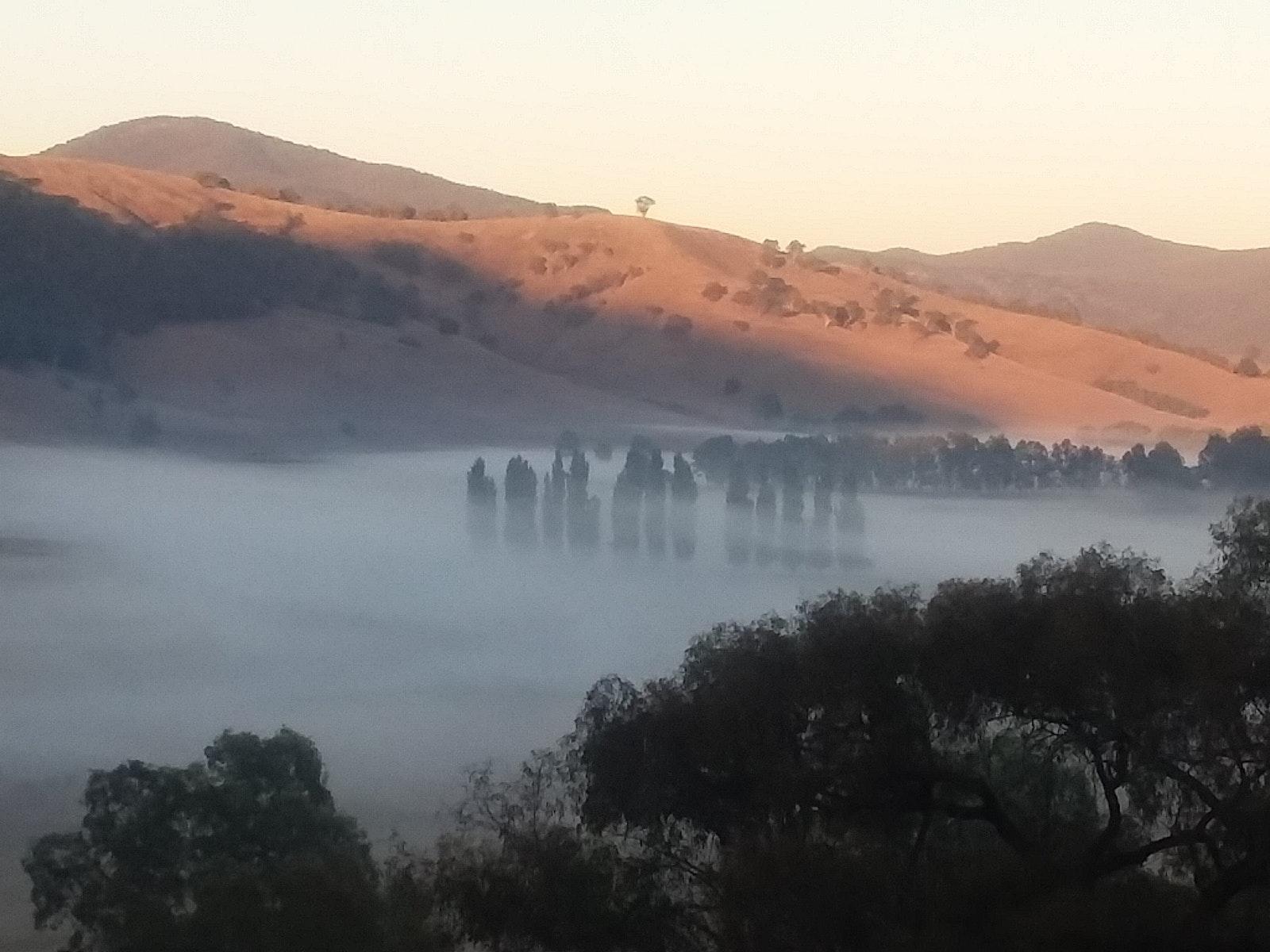a misty Mighty Murray River near Granya