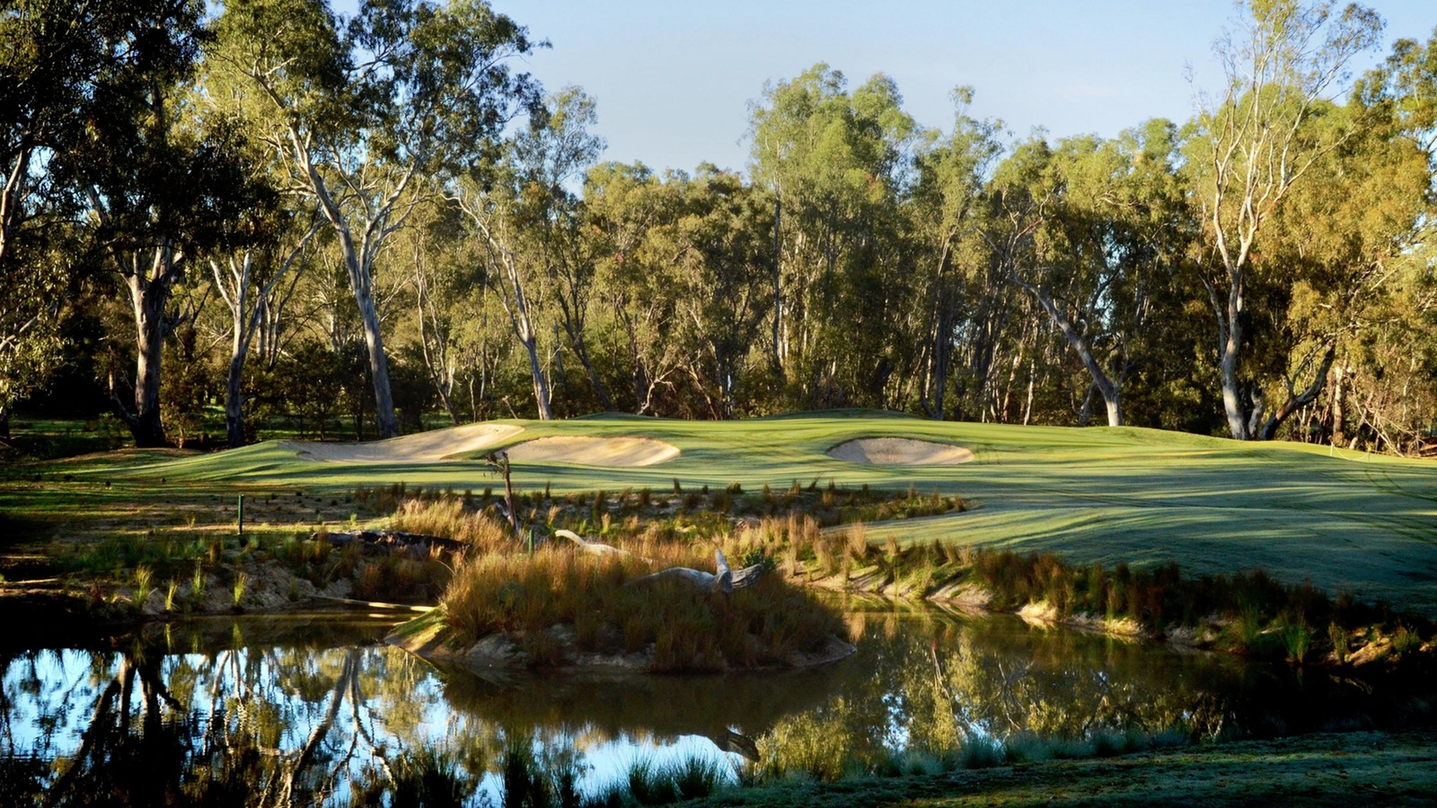 The new 3rd green on the Murray course at Yarrawonga