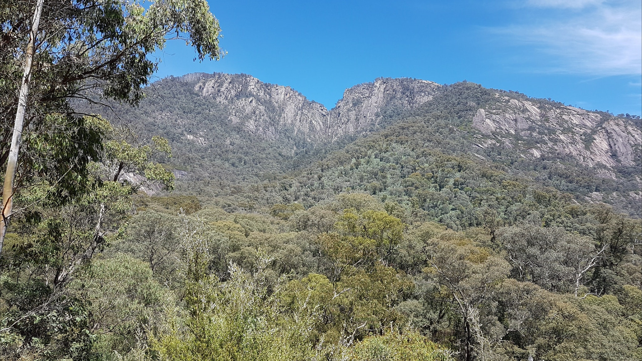 Mt Buffalo from the snow gate