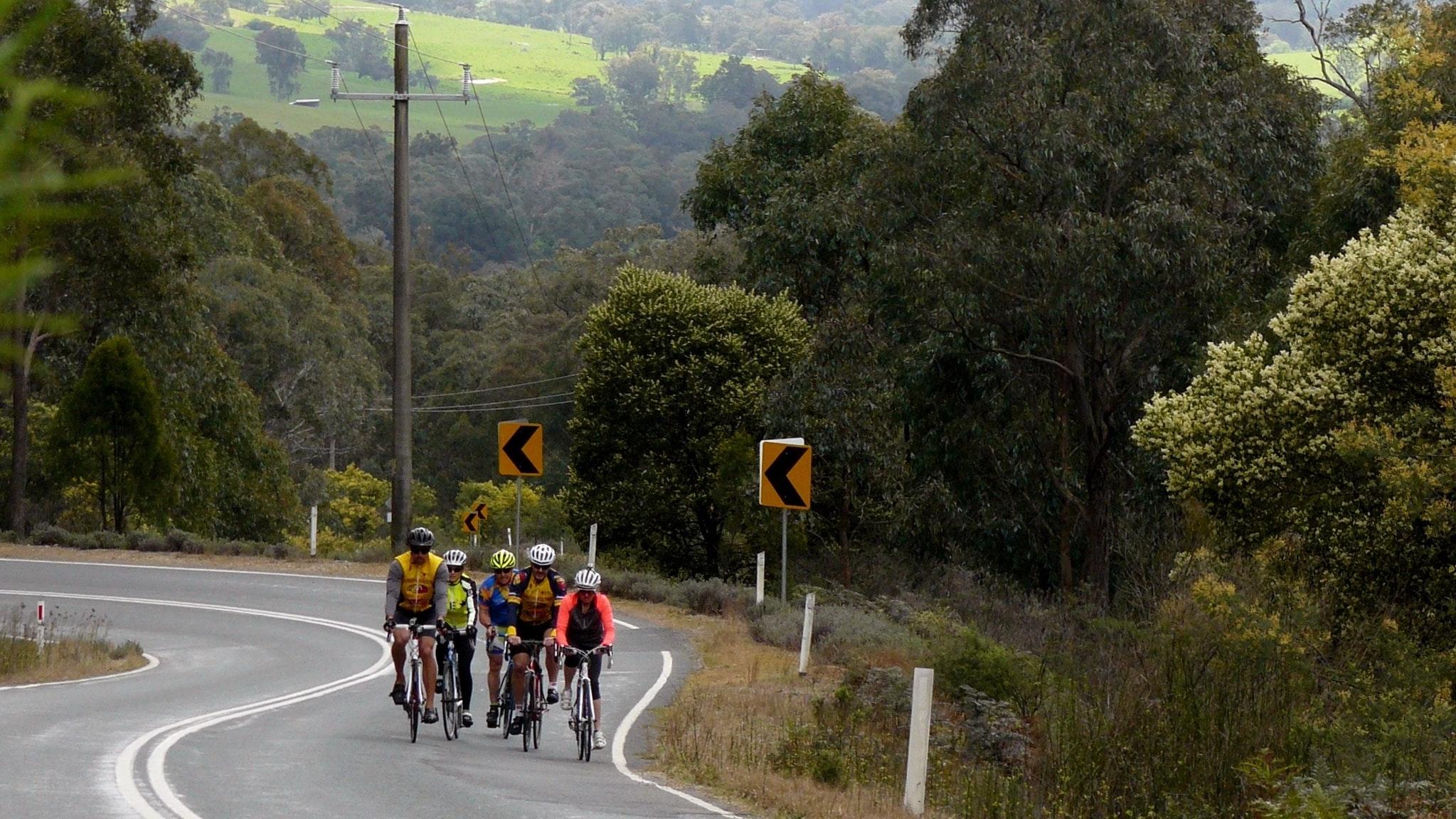 Cycling towards Mitta Mitta