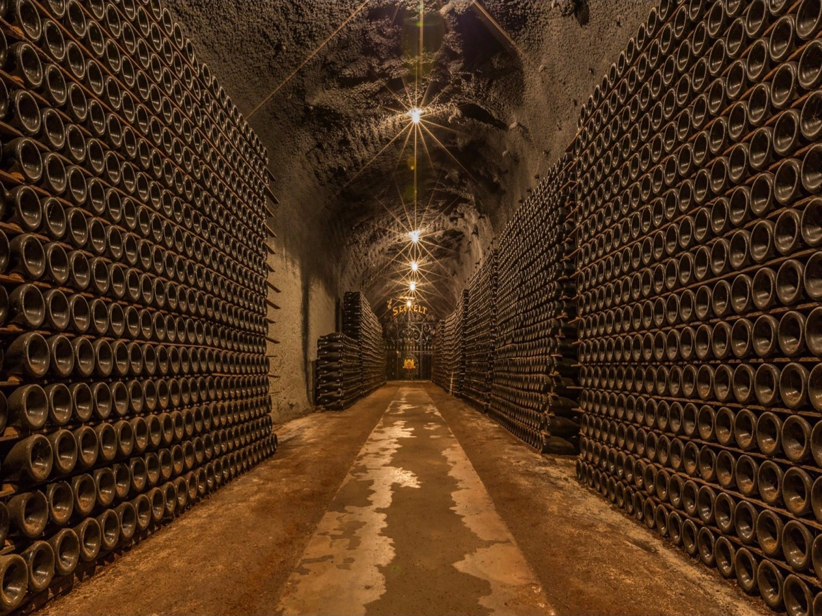 Seppelt Wines Tours - Great Western