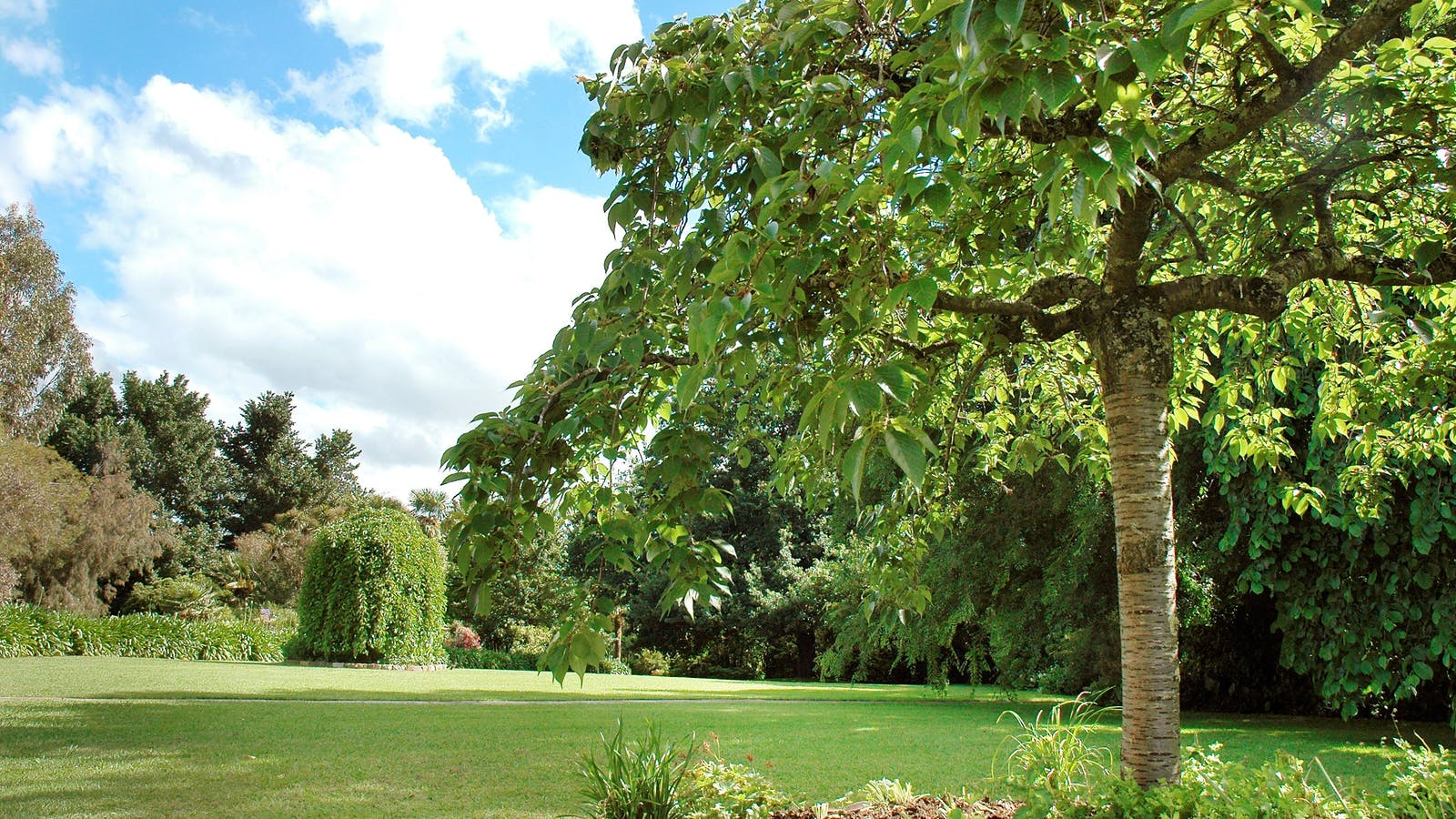 Chateau Yering Hotel -Gardens