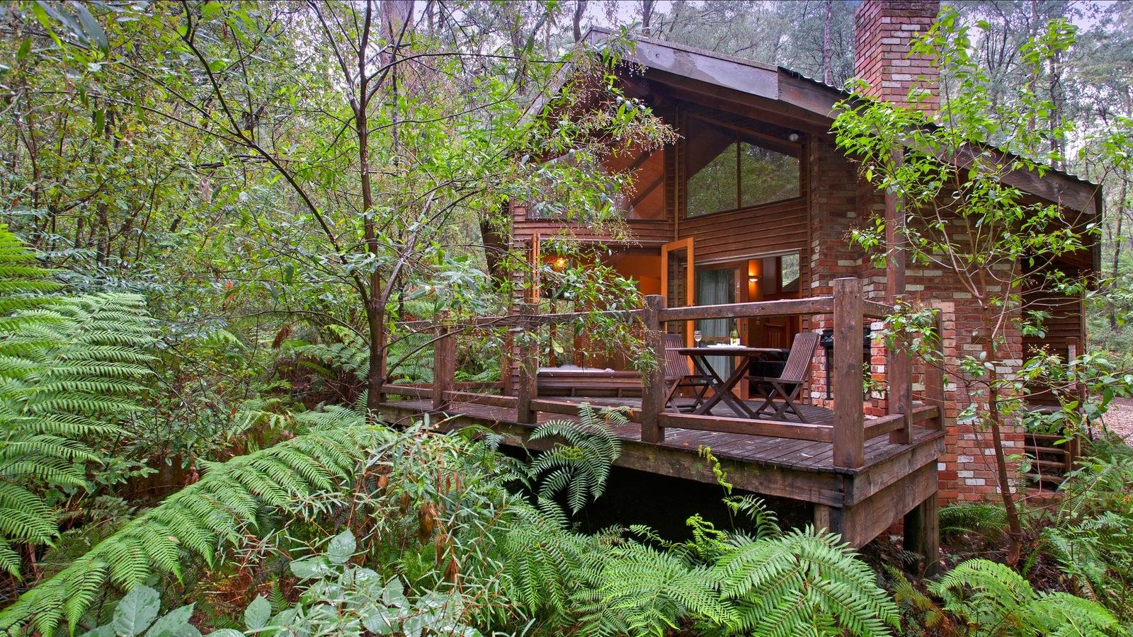 Woodlands Rainforest Retreat Deck View