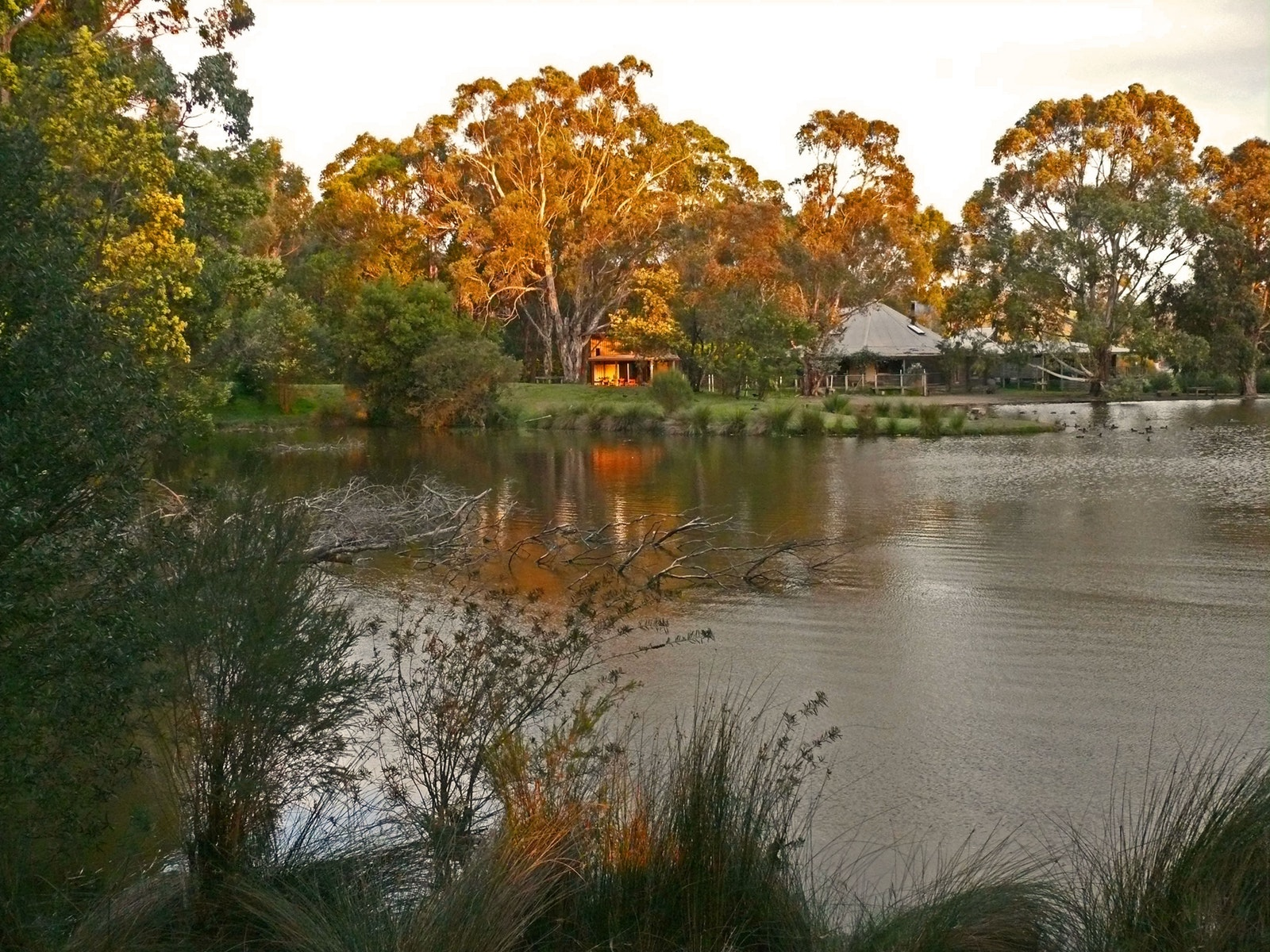The billabong in the evening light