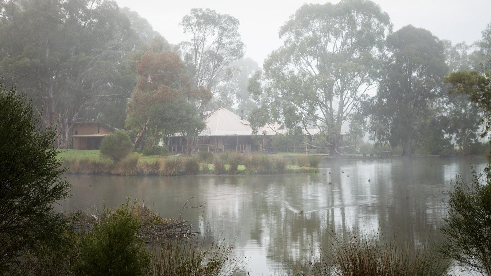 Misty morning over the billabong