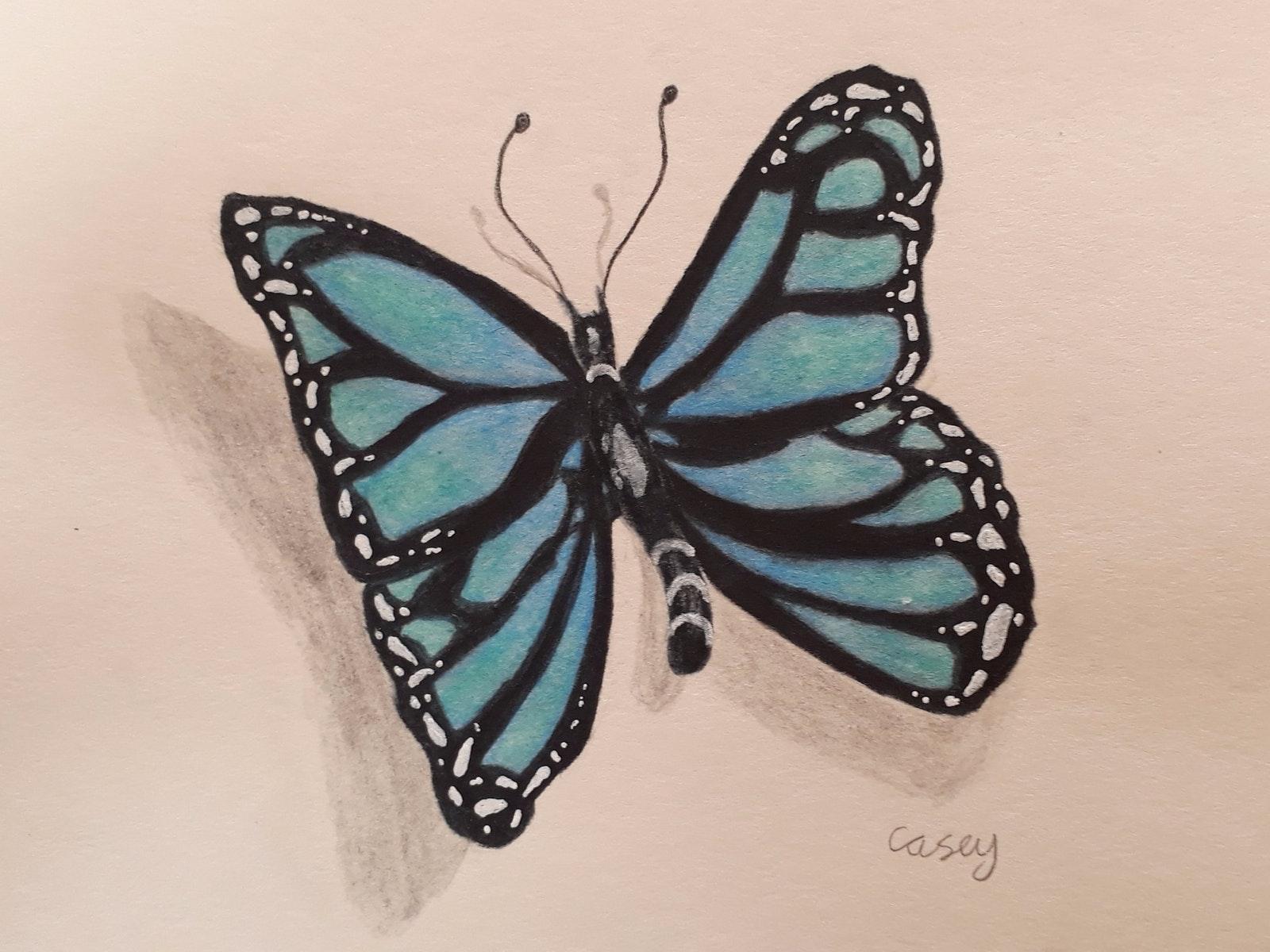 Butterfly by Casey Jeynes