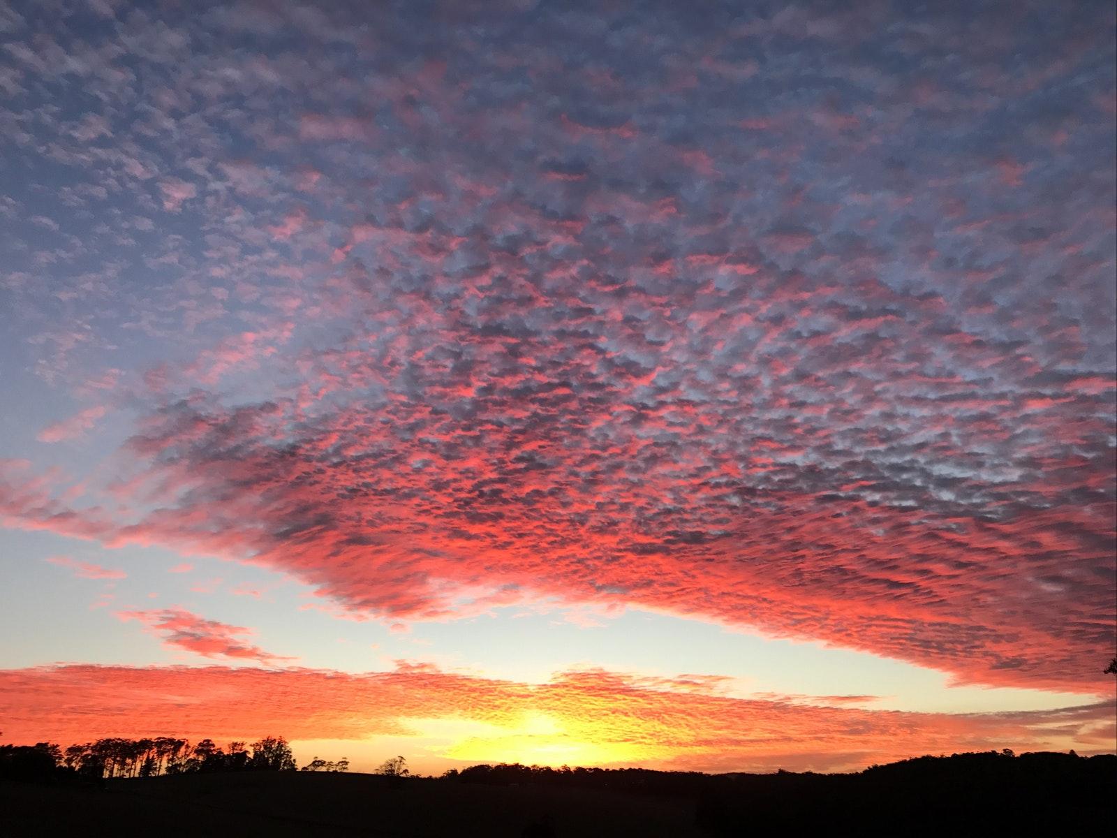 Sunset over Chestnut Hill Vineyard