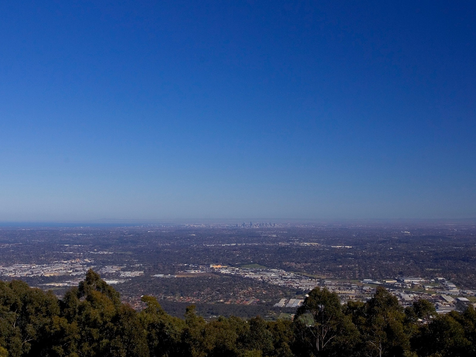 SkyHigh Mount Dandenong Day Shot