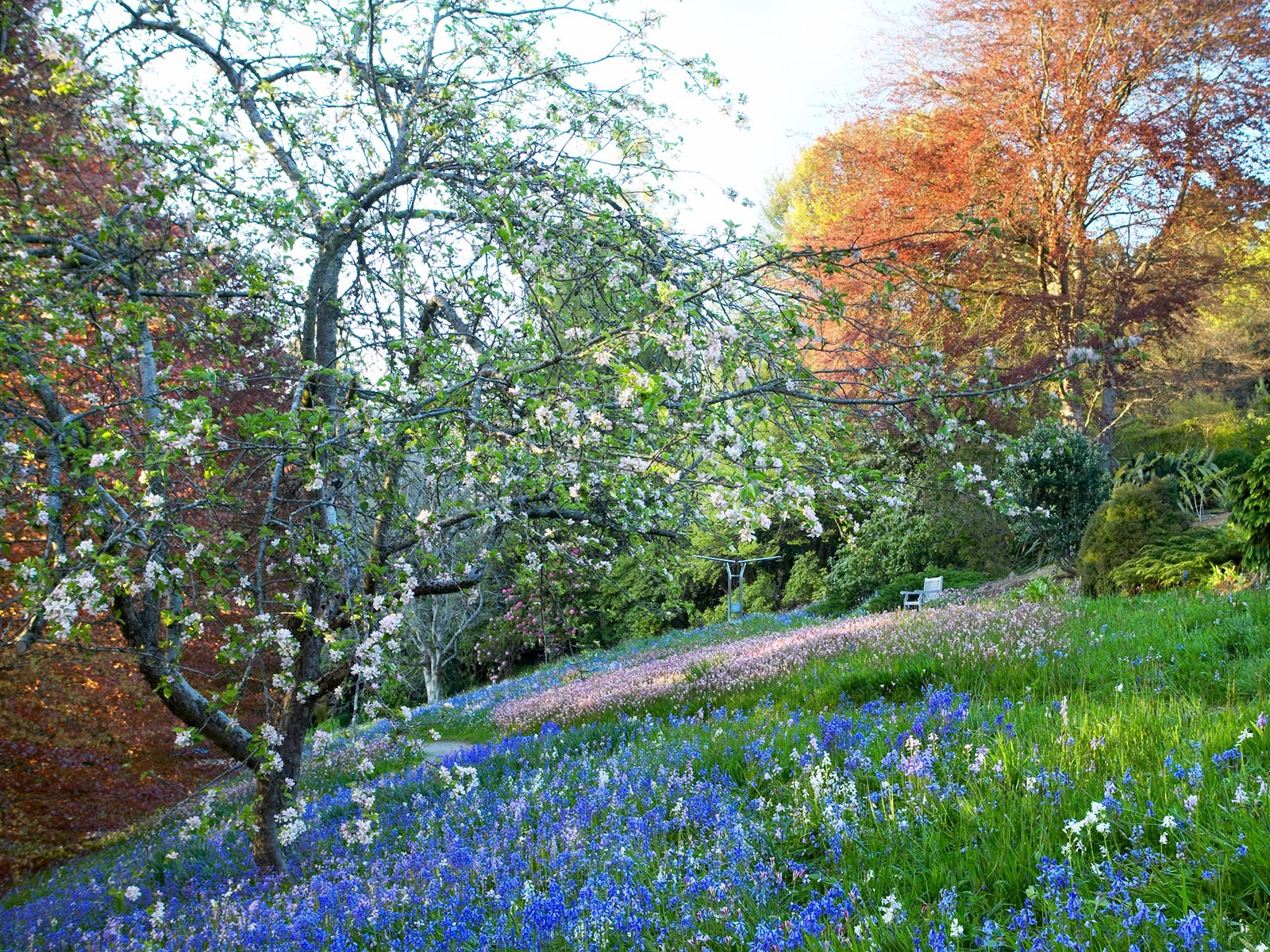 Parks and gardens nature and wildlife victoria australia for Garden design yarra valley