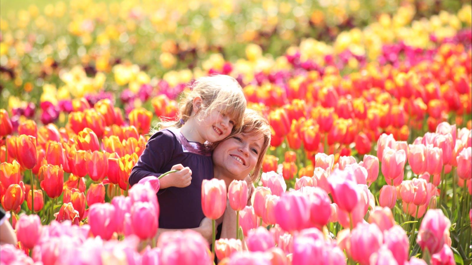 Plenty of family fun at the Tesselaar Tulip Festival