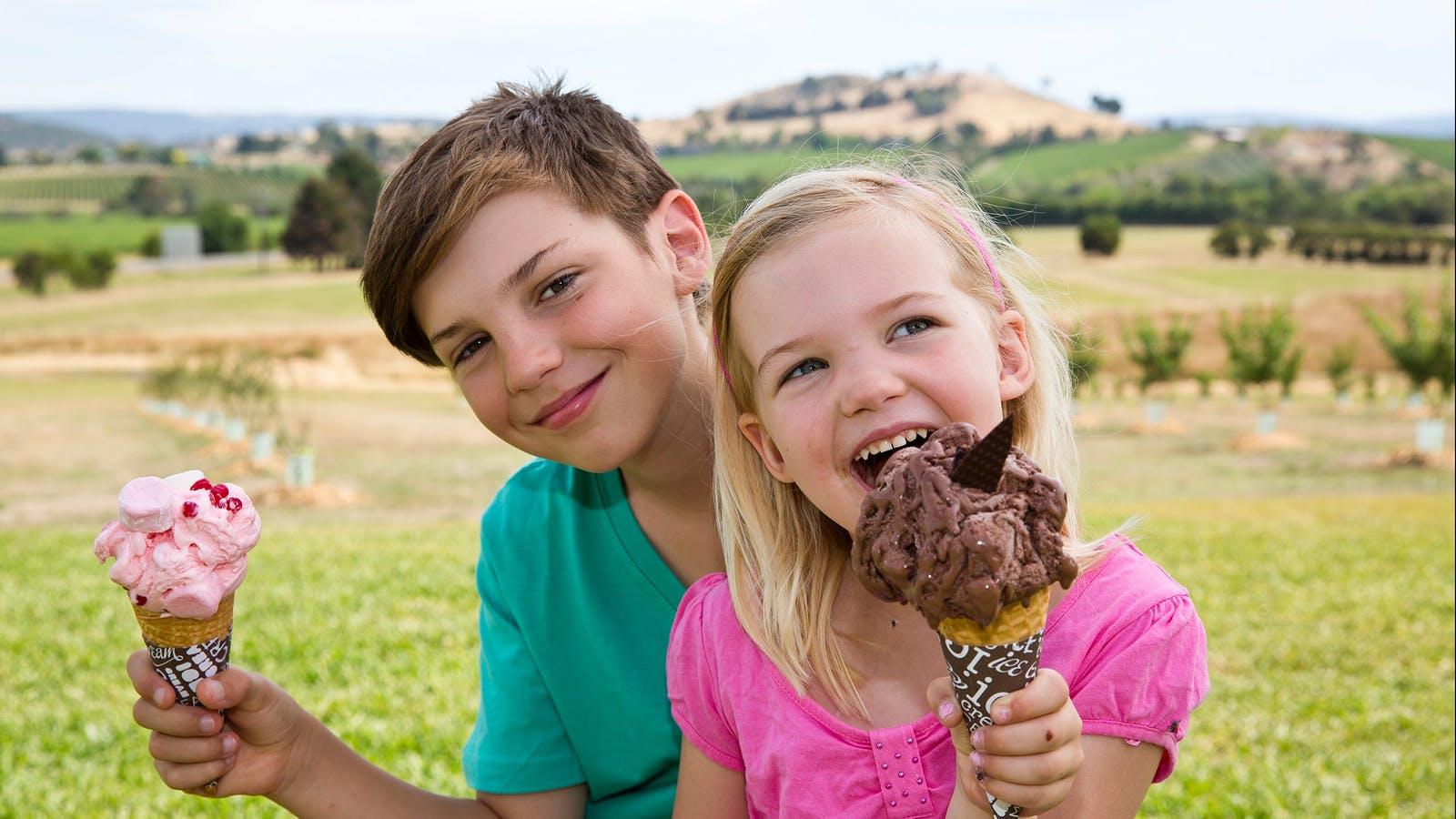 Yarra Valley Chocolaterie ice cream