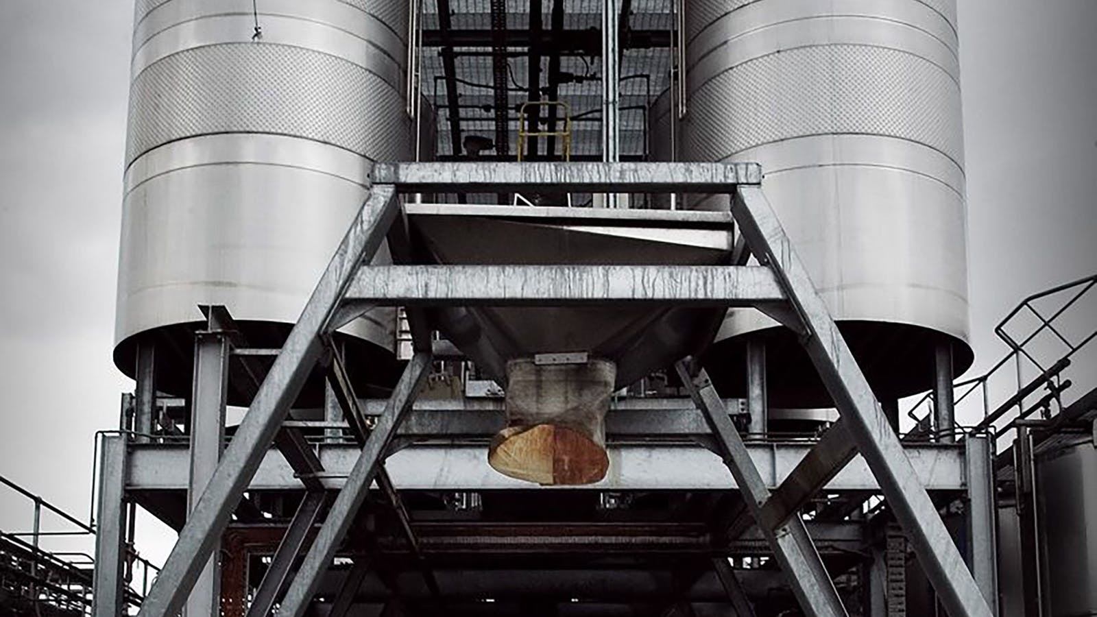 Red Fermenters
