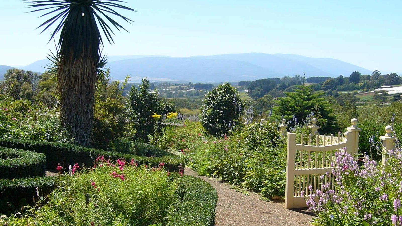 Views of the Yarra Valley and our beautiful Gardens
