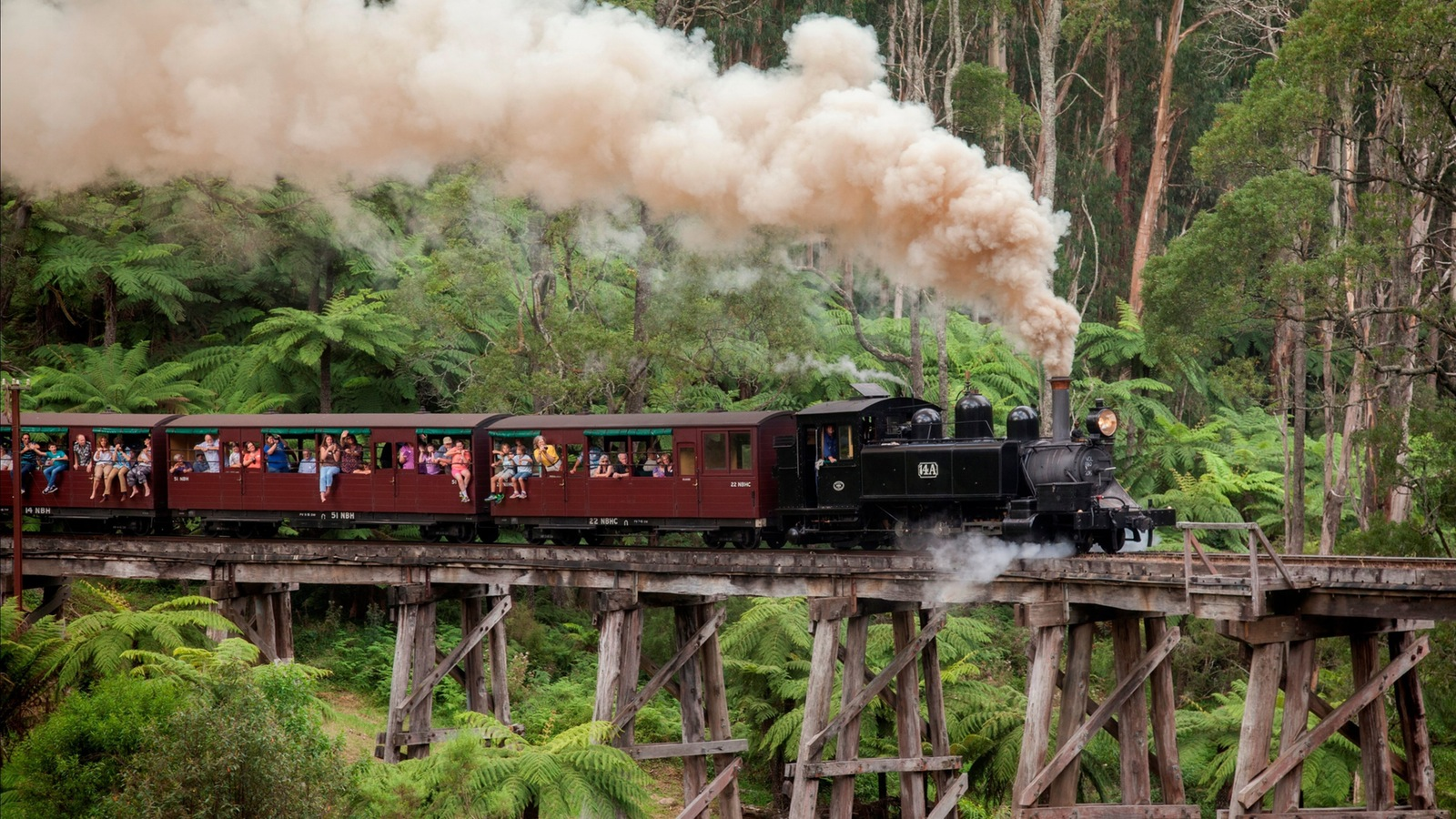 Puffing Billy Railway travels over the historic Trestle Bridge