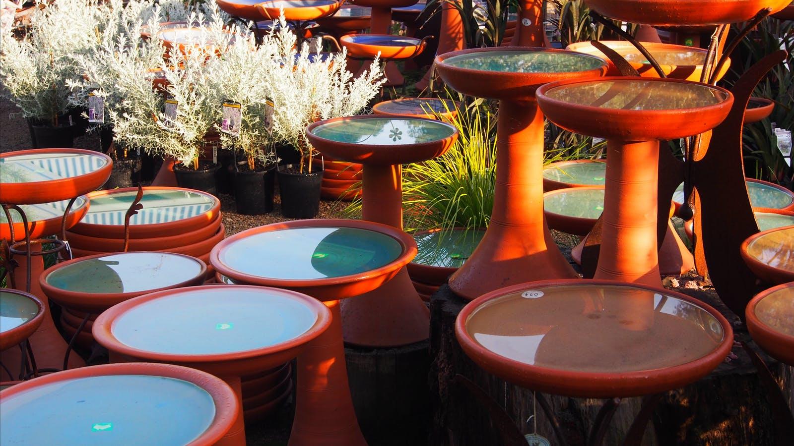 Bird baths, water bowls, bird feeders & nesting boxes