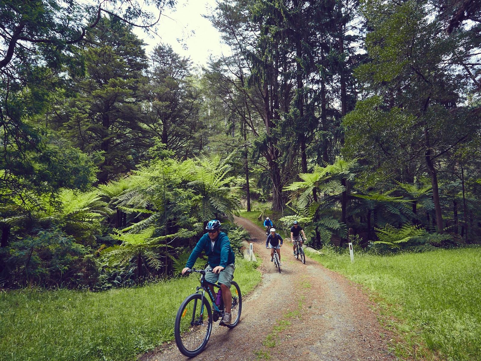 Pedals Australia