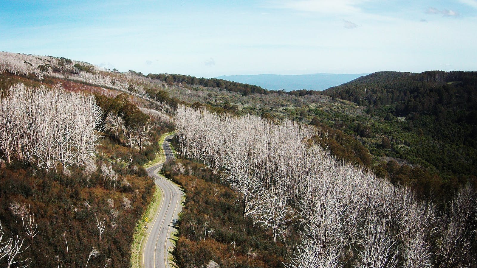 Lake Mountain Road